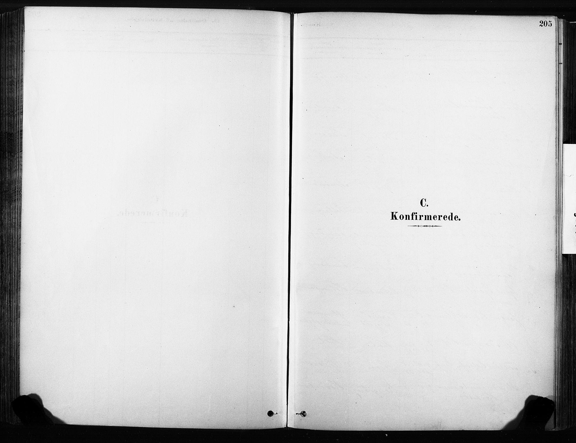 SAKO, Sandsvær kirkebøker, F/Fb/L0001: Ministerialbok nr. II 1, 1878-1906, s. 205