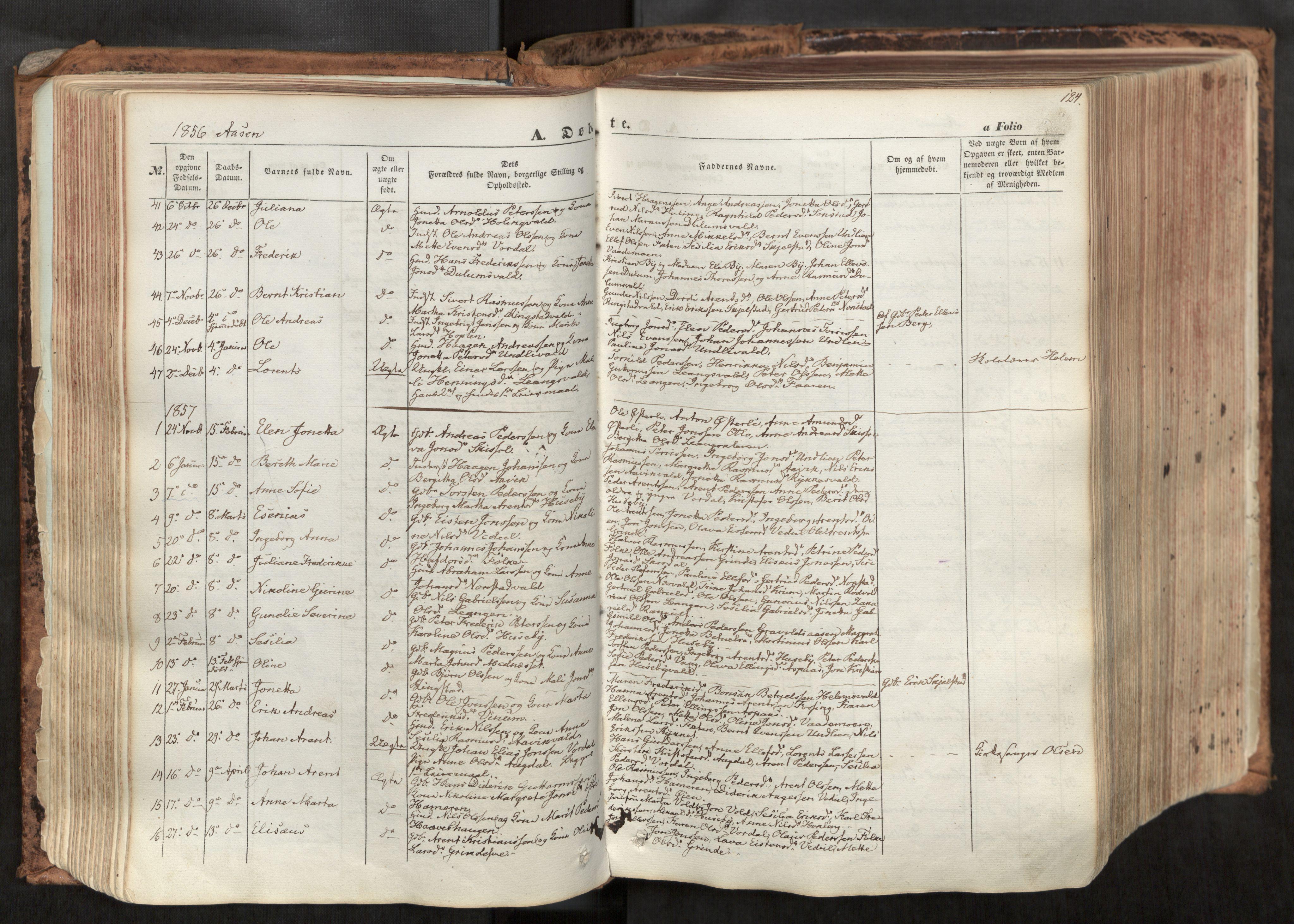 SAT, Ministerialprotokoller, klokkerbøker og fødselsregistre - Nord-Trøndelag, 713/L0116: Ministerialbok nr. 713A07, 1850-1877, s. 124