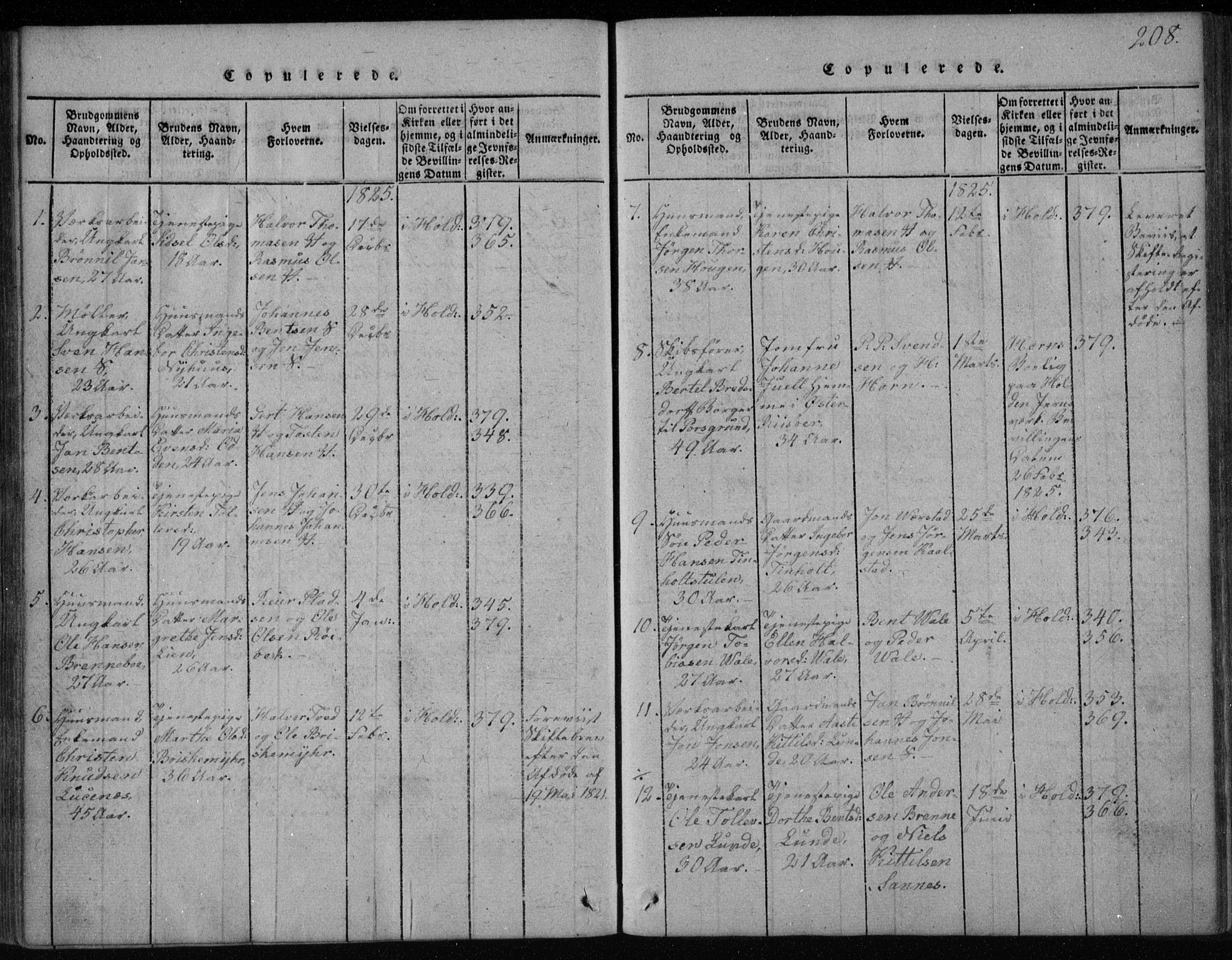SAKO, Holla kirkebøker, F/Fa/L0003: Ministerialbok nr. 3, 1815-1830, s. 208