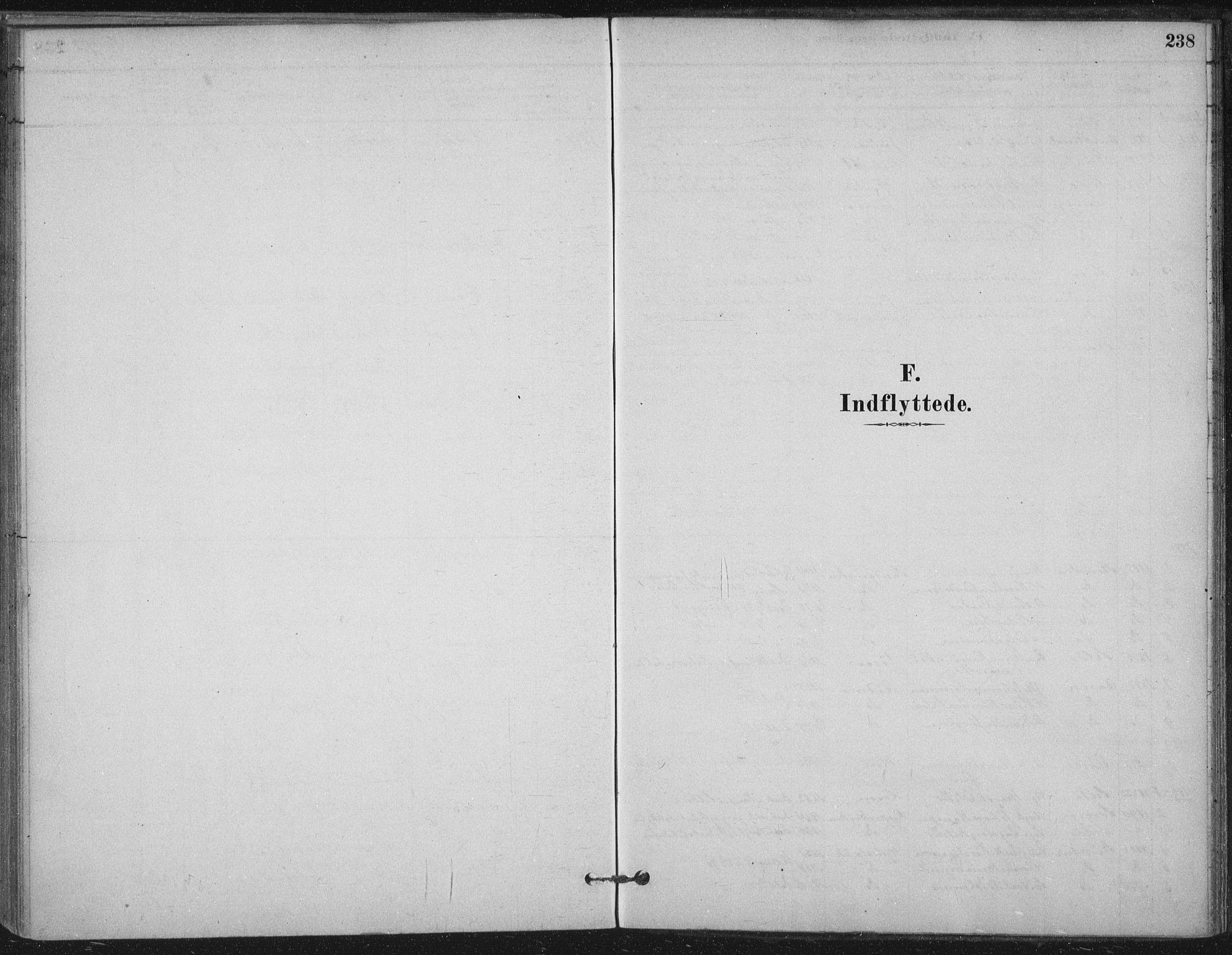 SAT, Ministerialprotokoller, klokkerbøker og fødselsregistre - Nord-Trøndelag, 710/L0095: Ministerialbok nr. 710A01, 1880-1914, s. 238
