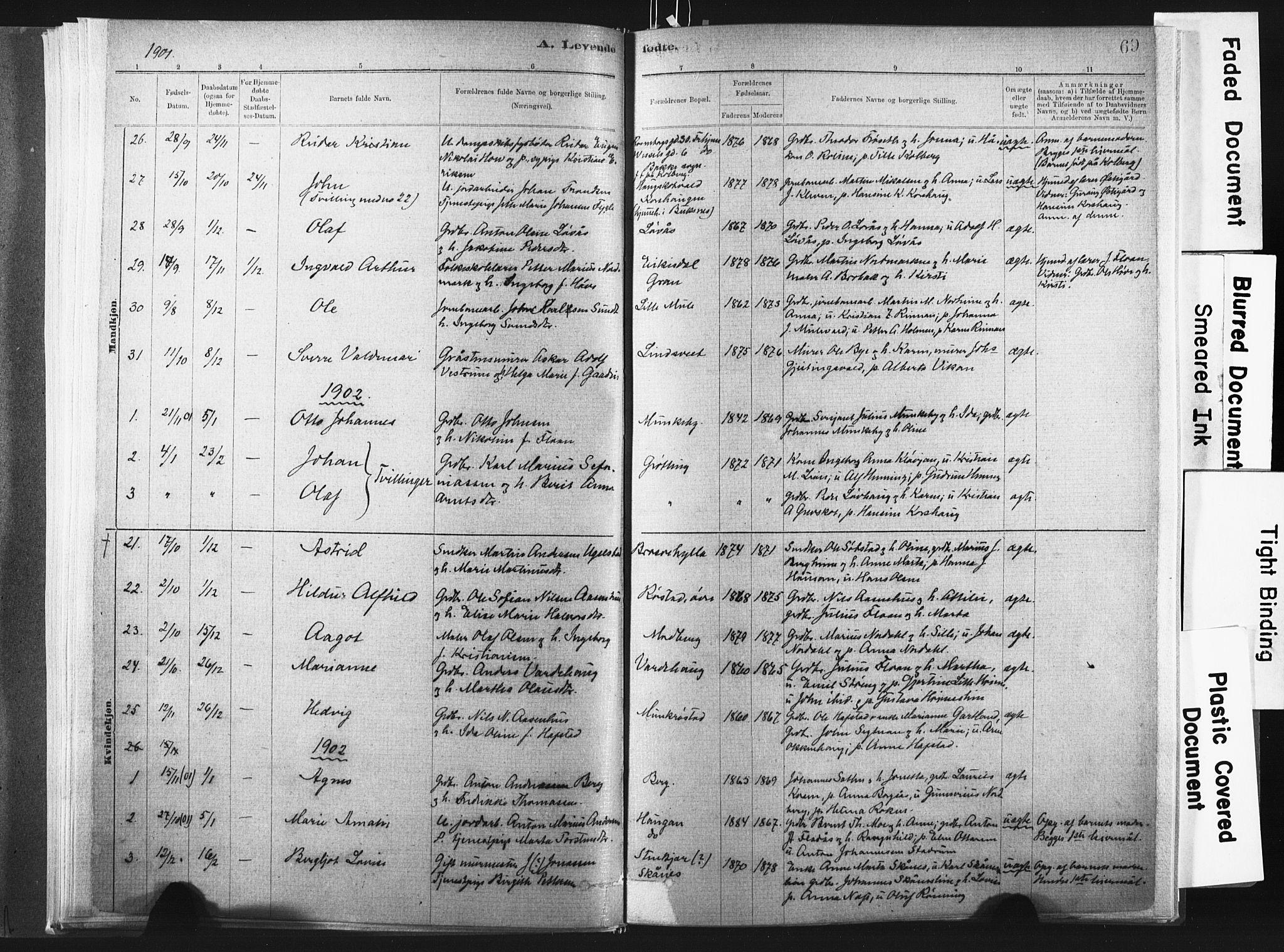 SAT, Ministerialprotokoller, klokkerbøker og fødselsregistre - Nord-Trøndelag, 721/L0207: Ministerialbok nr. 721A02, 1880-1911, s. 69
