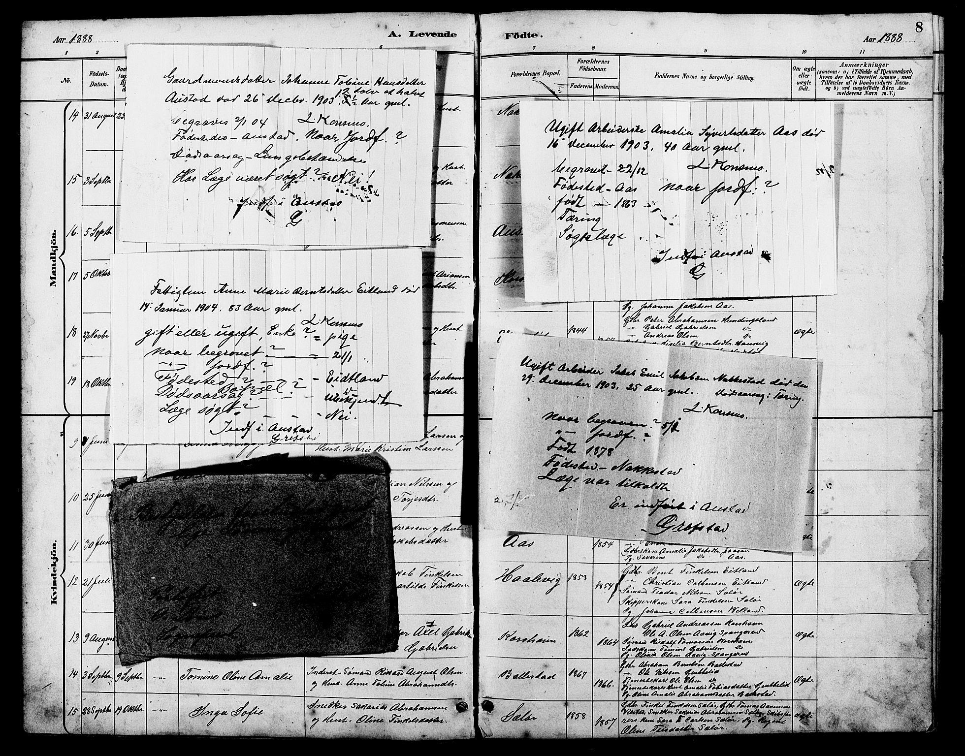 SAK, Lyngdal sokneprestkontor, F/Fb/Fba/L0003: Klokkerbok nr. B 3, 1886-1903, s. 8