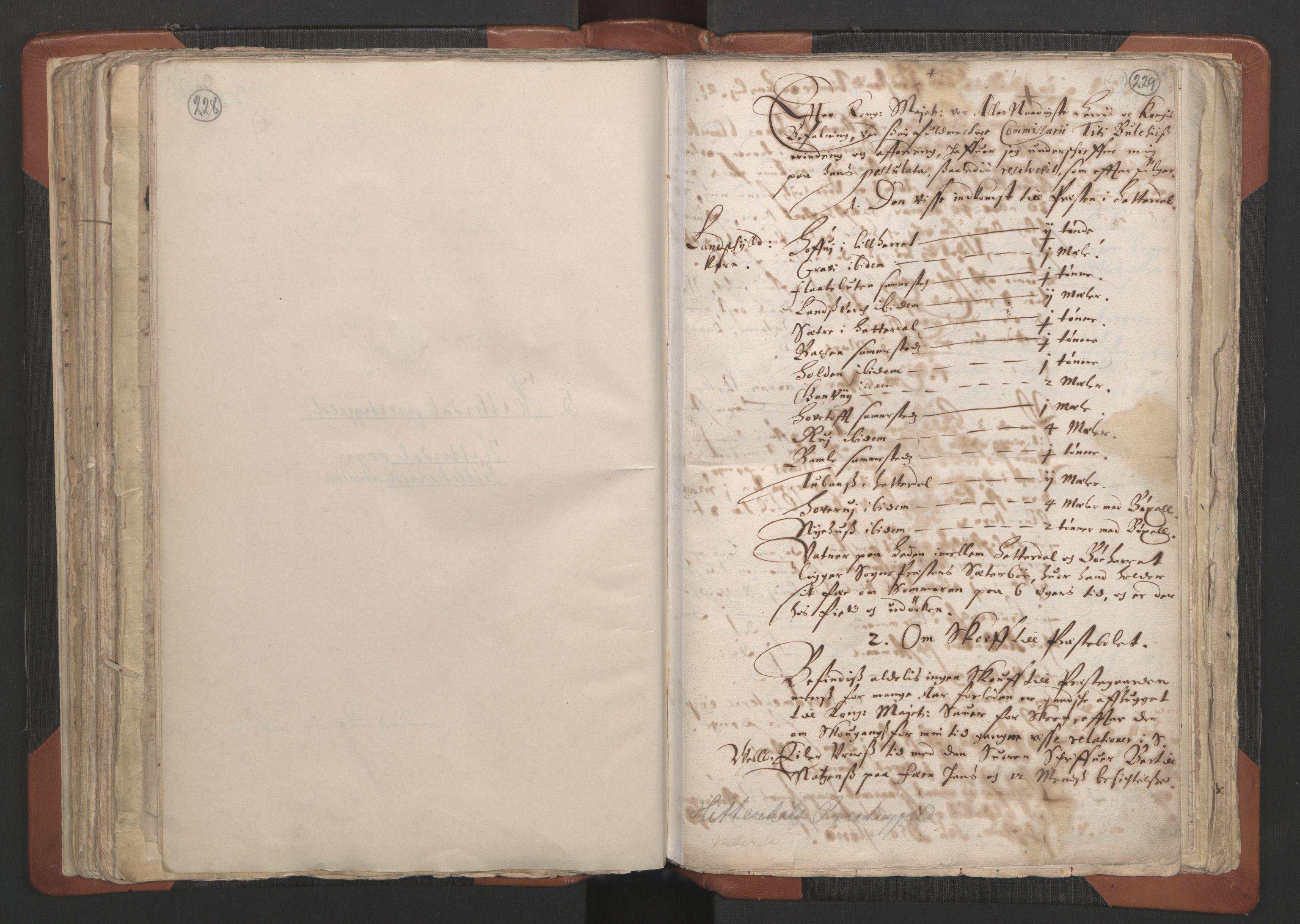 RA, Sogneprestenes manntall 1664-1666, nr. 12: Øvre Telemark prosti, Nedre Telemark prosti og Bamble prosti, 1664-1666, s. 228-229