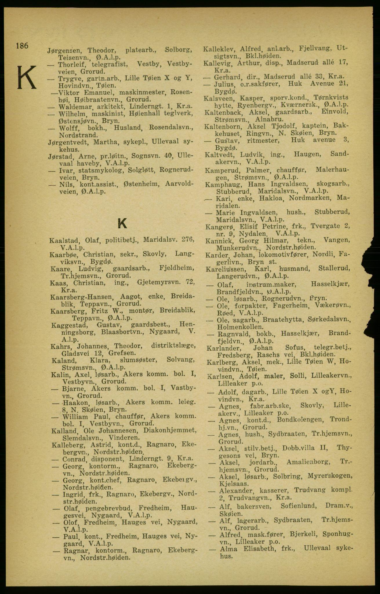 PUBL, Aker adressebok/adressekalender, 1924-1925, s. 186