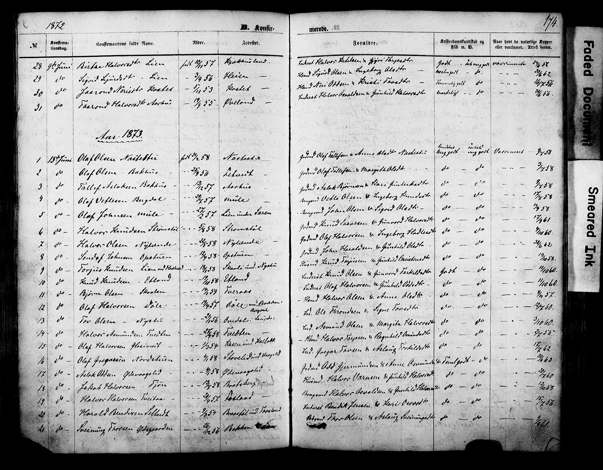 SAKO, Vinje kirkebøker, F/Fa/L0005: Ministerialbok nr. I 5, 1870-1886, s. 174