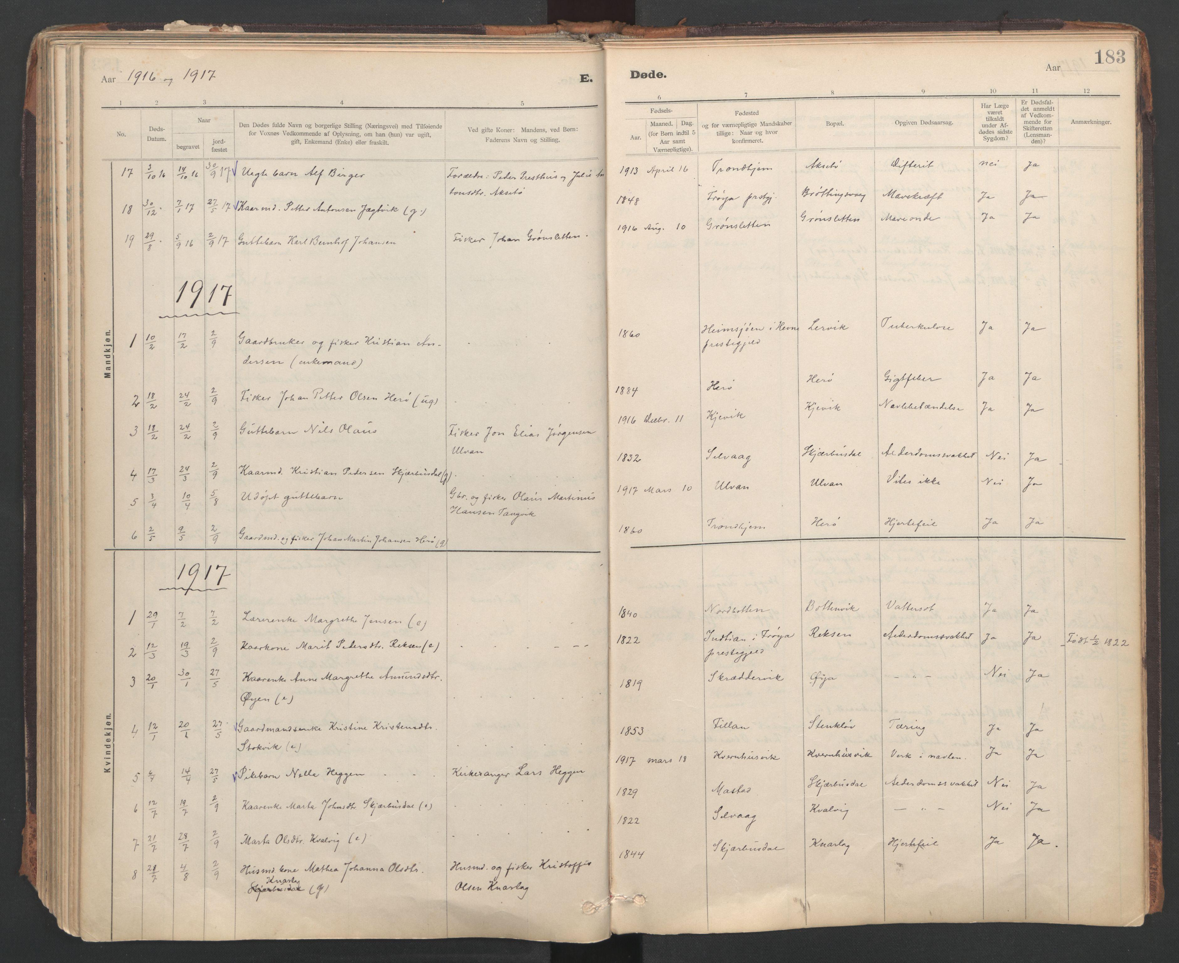 SAT, Ministerialprotokoller, klokkerbøker og fødselsregistre - Sør-Trøndelag, 637/L0559: Ministerialbok nr. 637A02, 1899-1923, s. 183