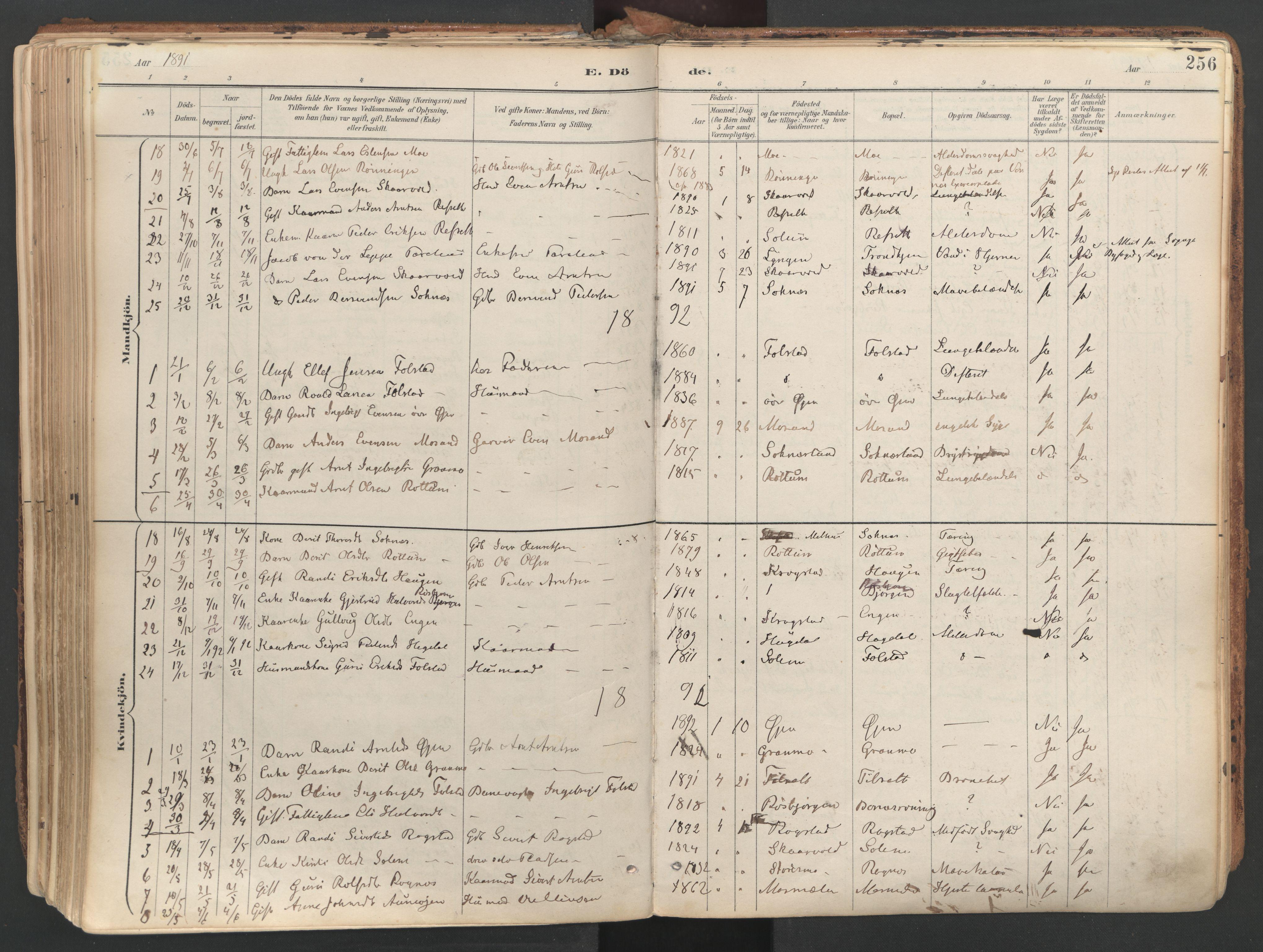 SAT, Ministerialprotokoller, klokkerbøker og fødselsregistre - Sør-Trøndelag, 687/L1004: Ministerialbok nr. 687A10, 1891-1923, s. 256