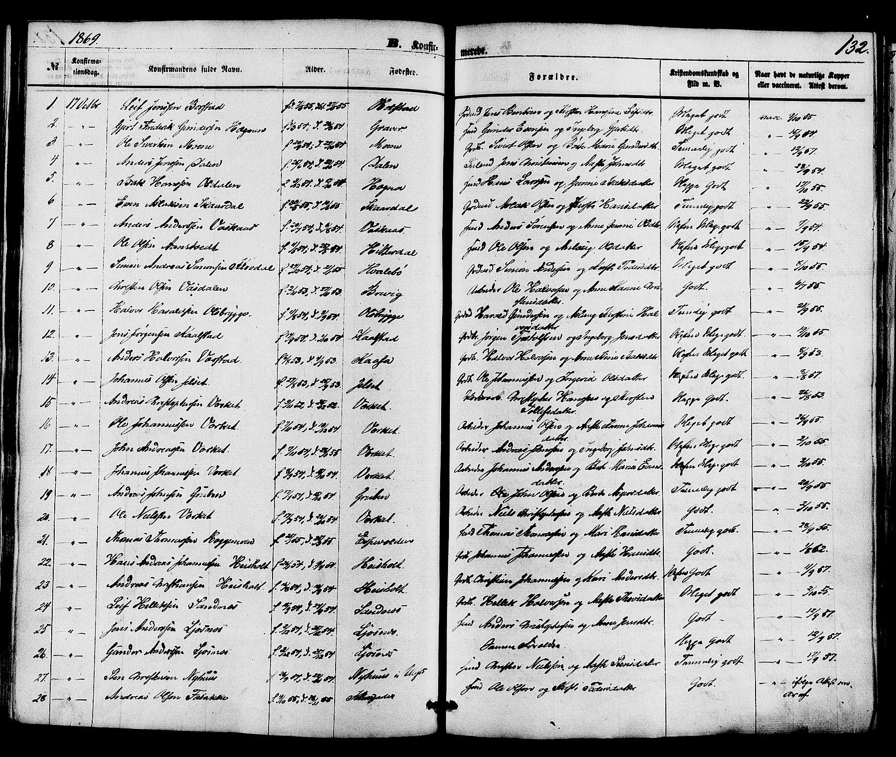 SAKO, Holla kirkebøker, F/Fa/L0007: Ministerialbok nr. 7, 1869-1881, s. 132