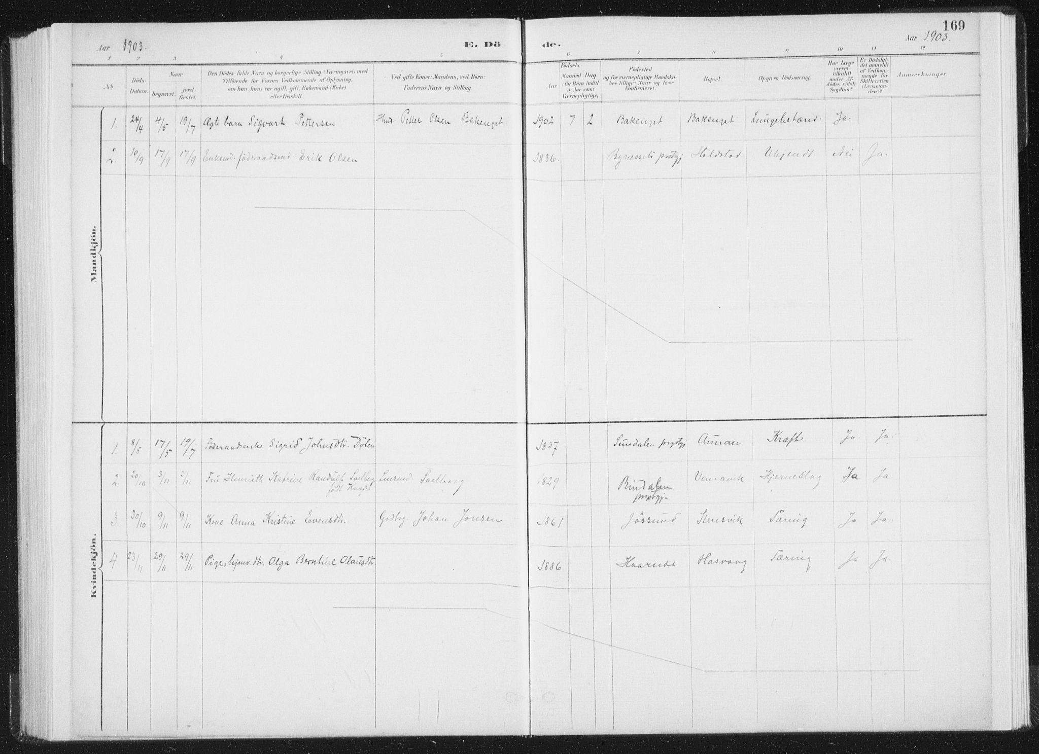 SAT, Ministerialprotokoller, klokkerbøker og fødselsregistre - Nord-Trøndelag, 771/L0597: Ministerialbok nr. 771A04, 1885-1910, s. 169
