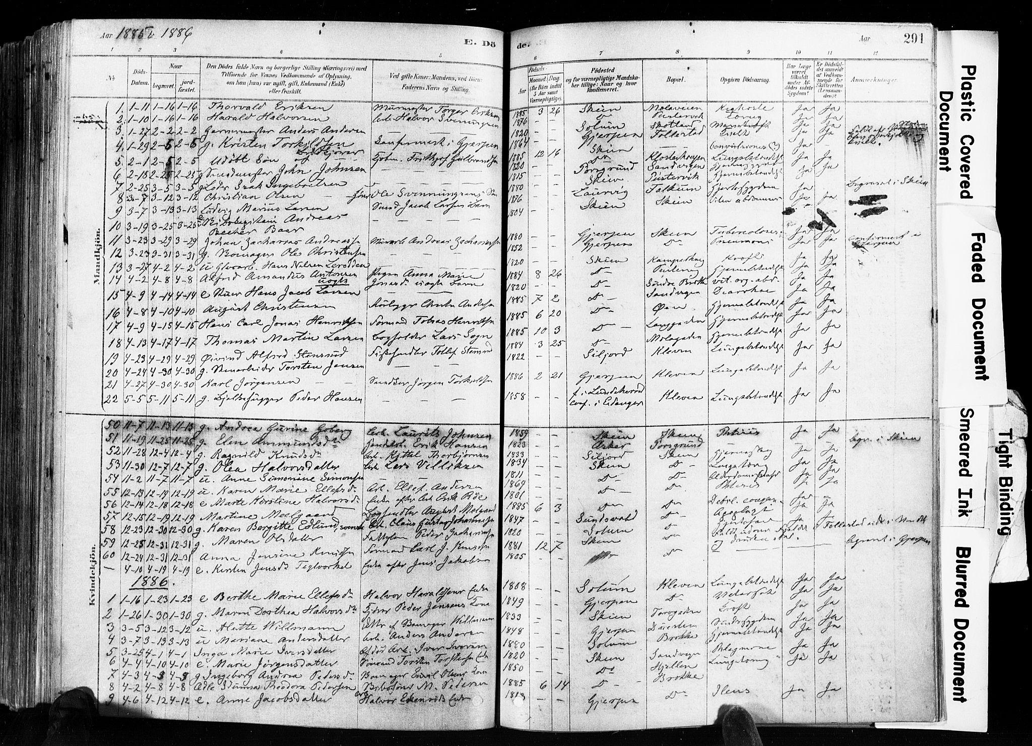 SAKO, Skien kirkebøker, F/Fa/L0009: Ministerialbok nr. 9, 1878-1890, s. 291