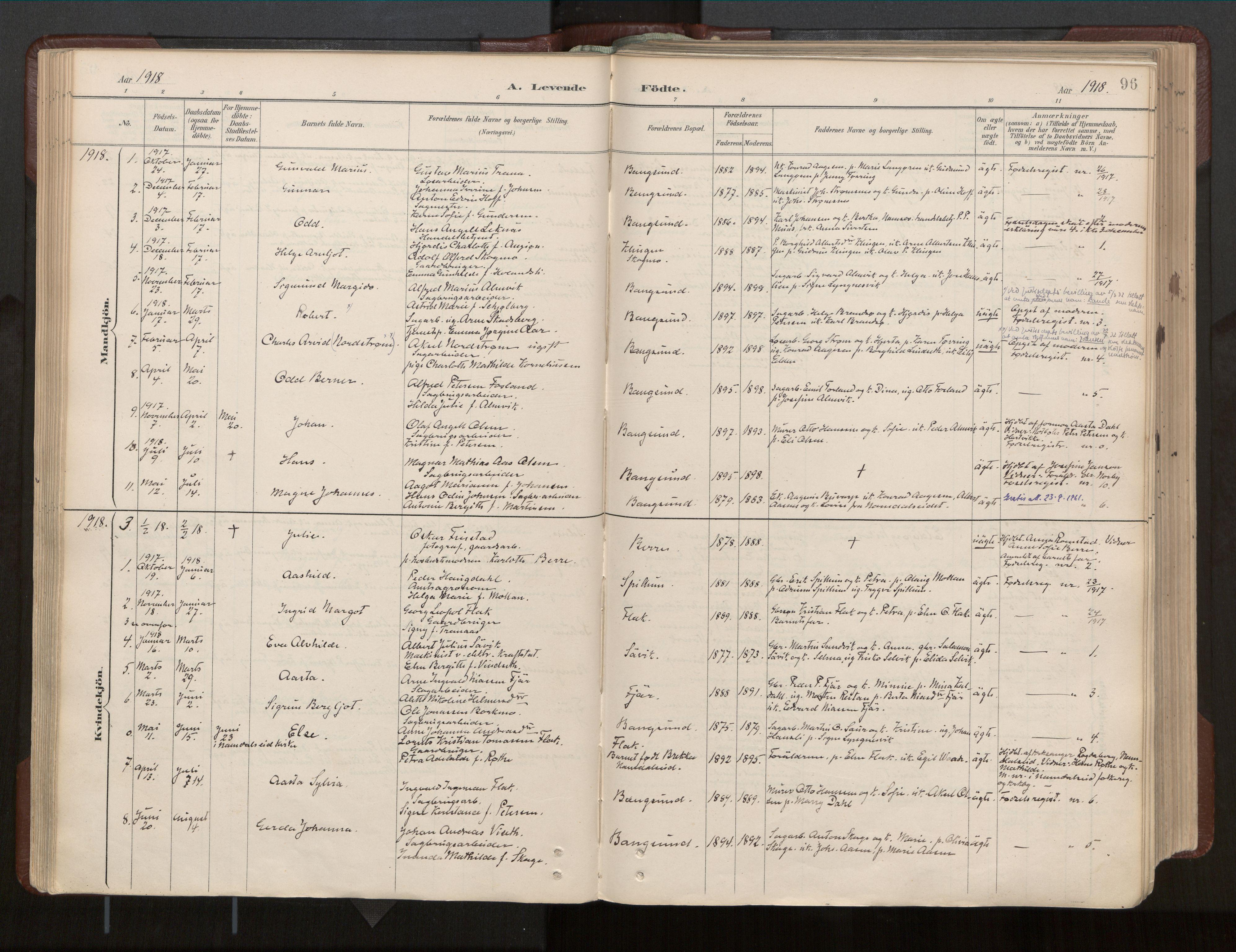 SAT, Ministerialprotokoller, klokkerbøker og fødselsregistre - Nord-Trøndelag, 770/L0589: Ministerialbok nr. 770A03, 1887-1929, s. 96