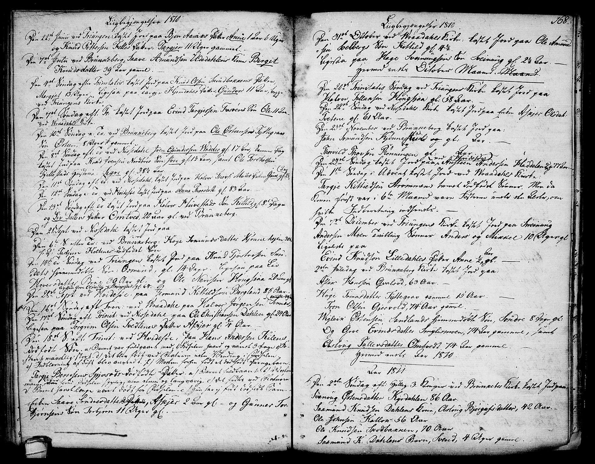 SAKO, Kviteseid kirkebøker, F/Fa/L0004: Ministerialbok nr. I 4, 1800-1814, s. 168