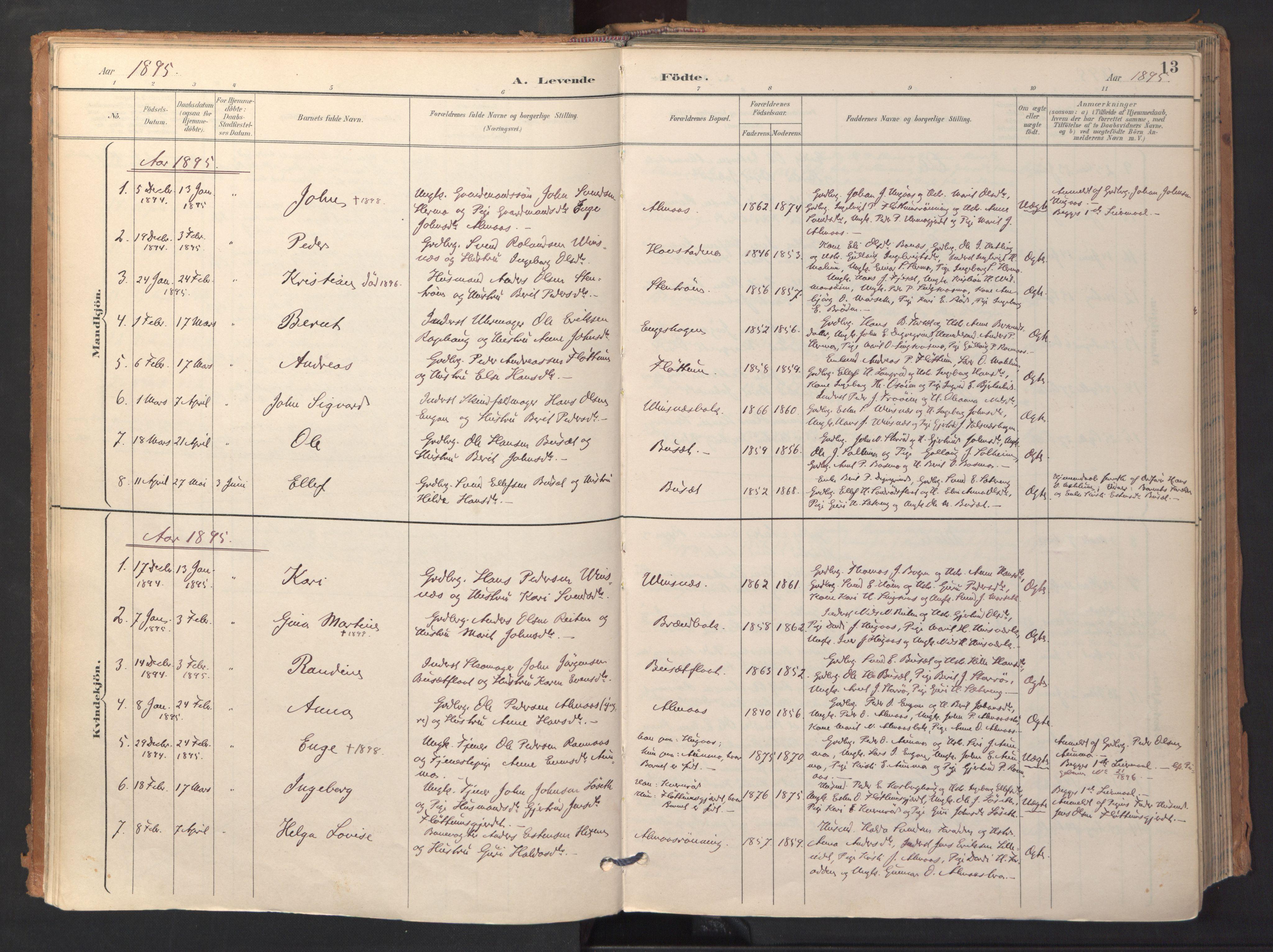 SAT, Ministerialprotokoller, klokkerbøker og fødselsregistre - Sør-Trøndelag, 688/L1025: Ministerialbok nr. 688A02, 1891-1909, s. 13