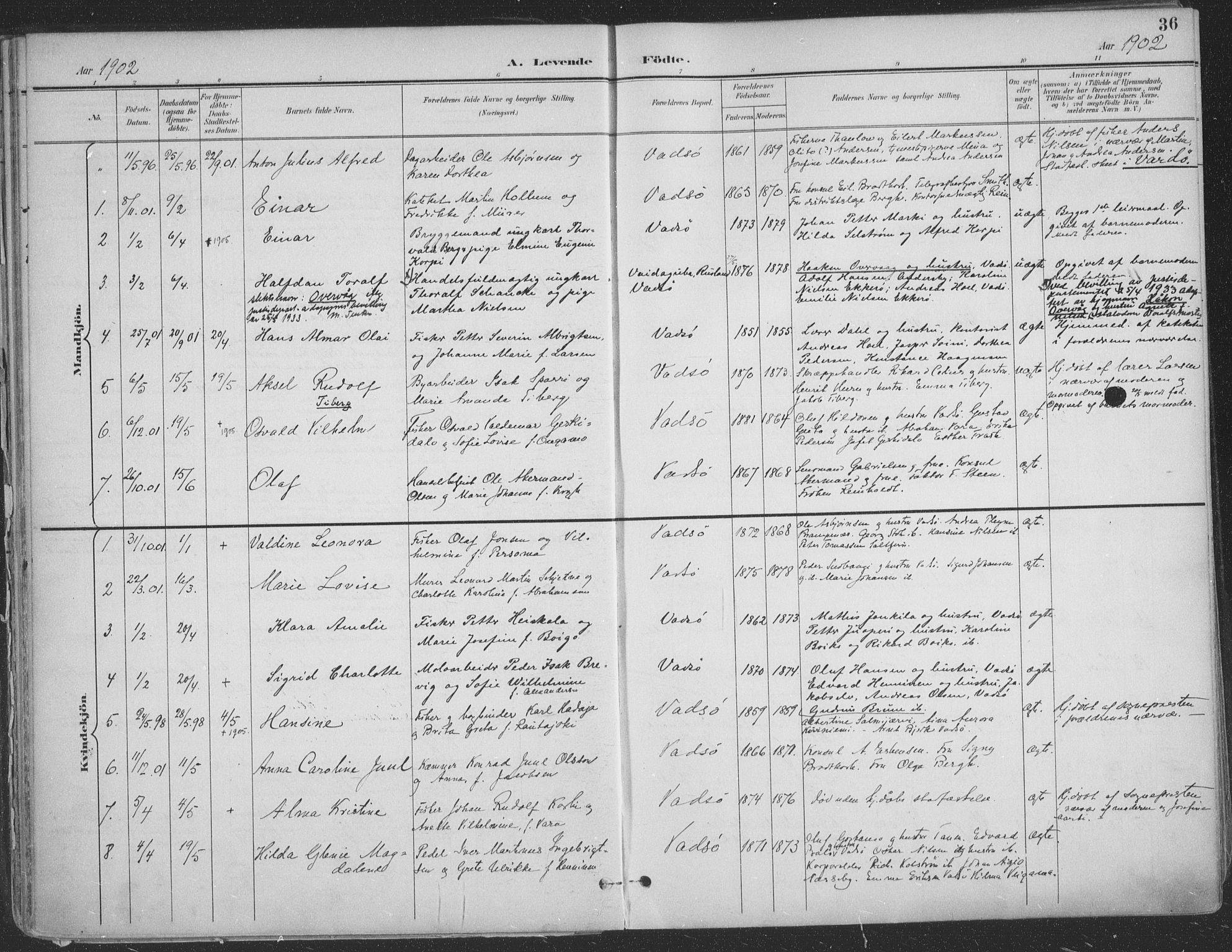 SATØ, Vadsø sokneprestkontor, H/Ha/L0007kirke: Ministerialbok nr. 7, 1896-1916, s. 36