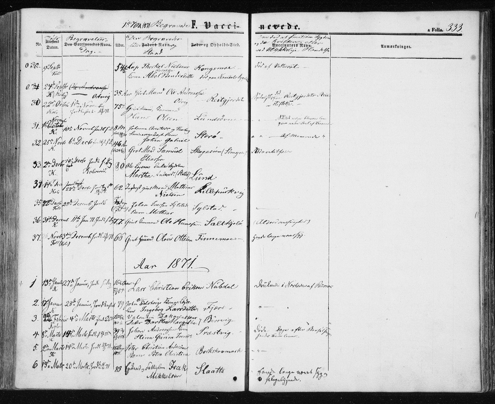 SAT, Ministerialprotokoller, klokkerbøker og fødselsregistre - Nord-Trøndelag, 780/L0641: Ministerialbok nr. 780A06, 1857-1874, s. 333