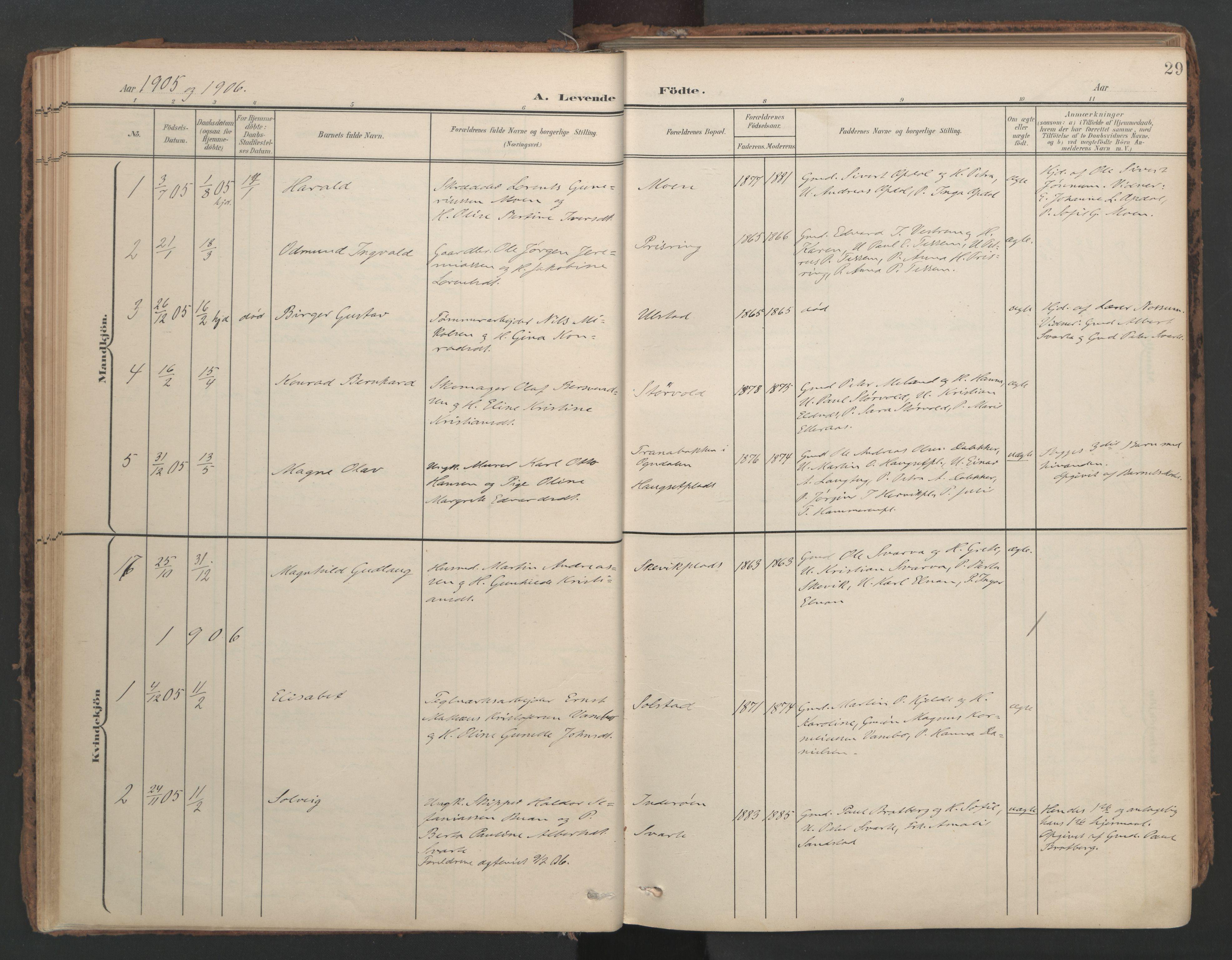 SAT, Ministerialprotokoller, klokkerbøker og fødselsregistre - Nord-Trøndelag, 741/L0397: Ministerialbok nr. 741A11, 1901-1911, s. 29
