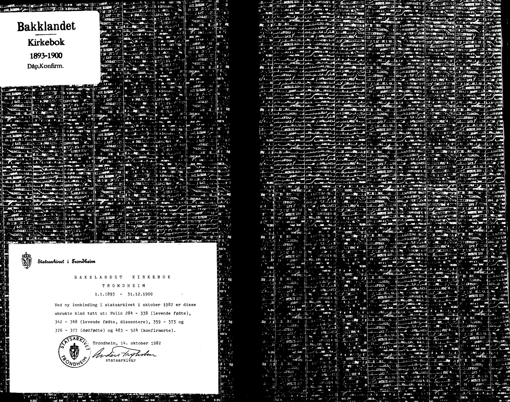 SAT, Ministerialprotokoller, klokkerbøker og fødselsregistre - Sør-Trøndelag, 604/L0197: Ministerialbok nr. 604A18, 1893-1900