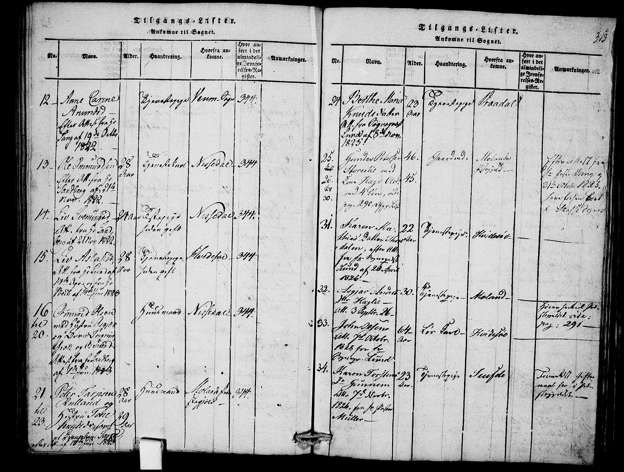 SAKO, Mo kirkebøker, F/Fb/L0001: Ministerialbok nr. II 1, 1814-1844, s. 313