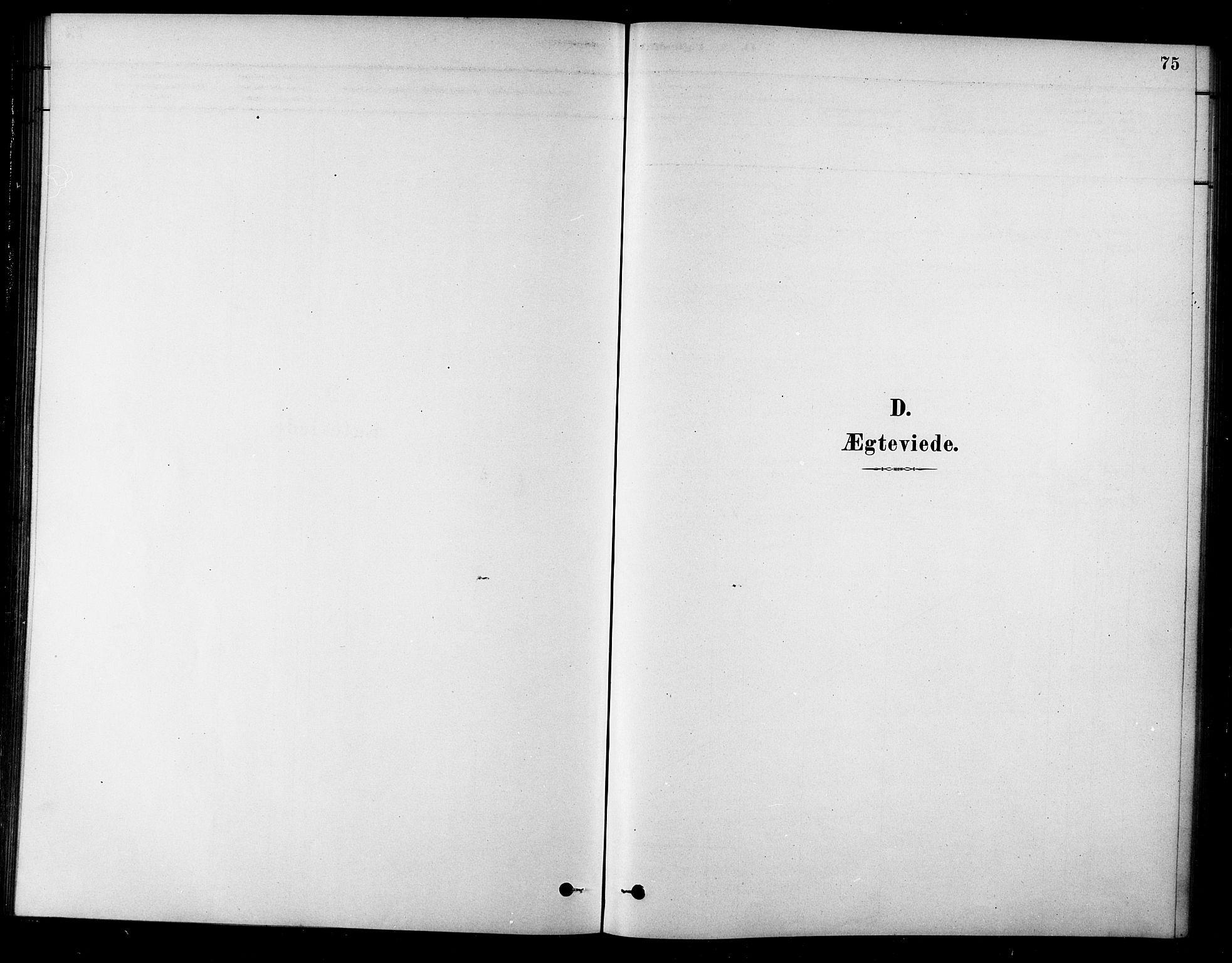 SAT, Ministerialprotokoller, klokkerbøker og fødselsregistre - Sør-Trøndelag, 685/L0972: Ministerialbok nr. 685A09, 1879-1890, s. 75