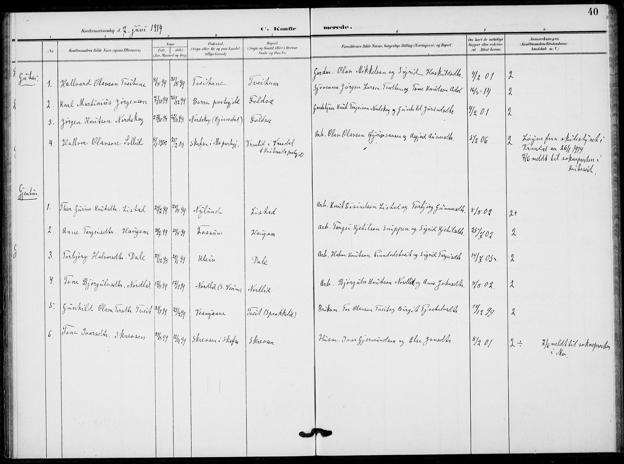 SAKO, Fyresdal kirkebøker, F/Fb/L0004: Ministerialbok nr. II 4, 1903-1920, s. 40