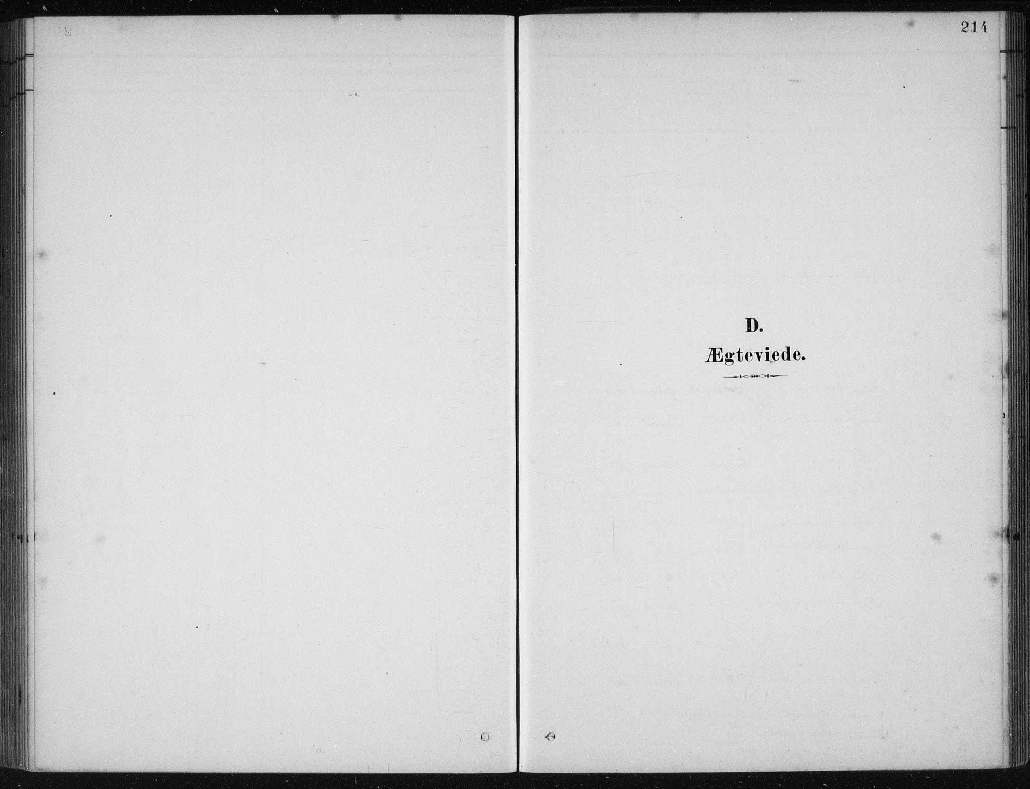 SAB, Etne Sokneprestembete, H/Haa: Ministerialbok nr. D  1, 1879-1919, s. 214