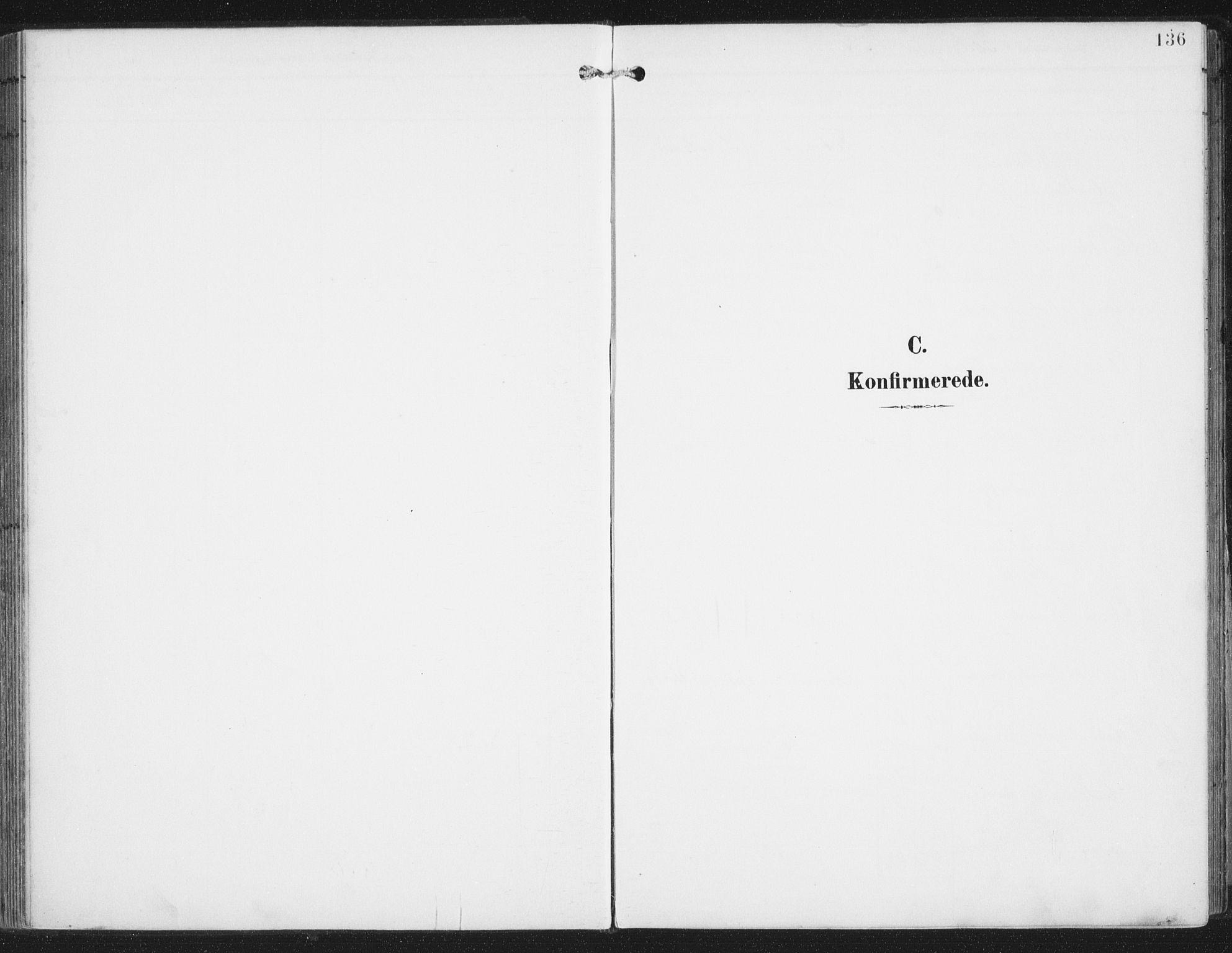 SAT, Ministerialprotokoller, klokkerbøker og fødselsregistre - Nordland, 876/L1098: Ministerialbok nr. 876A04, 1896-1915, s. 136