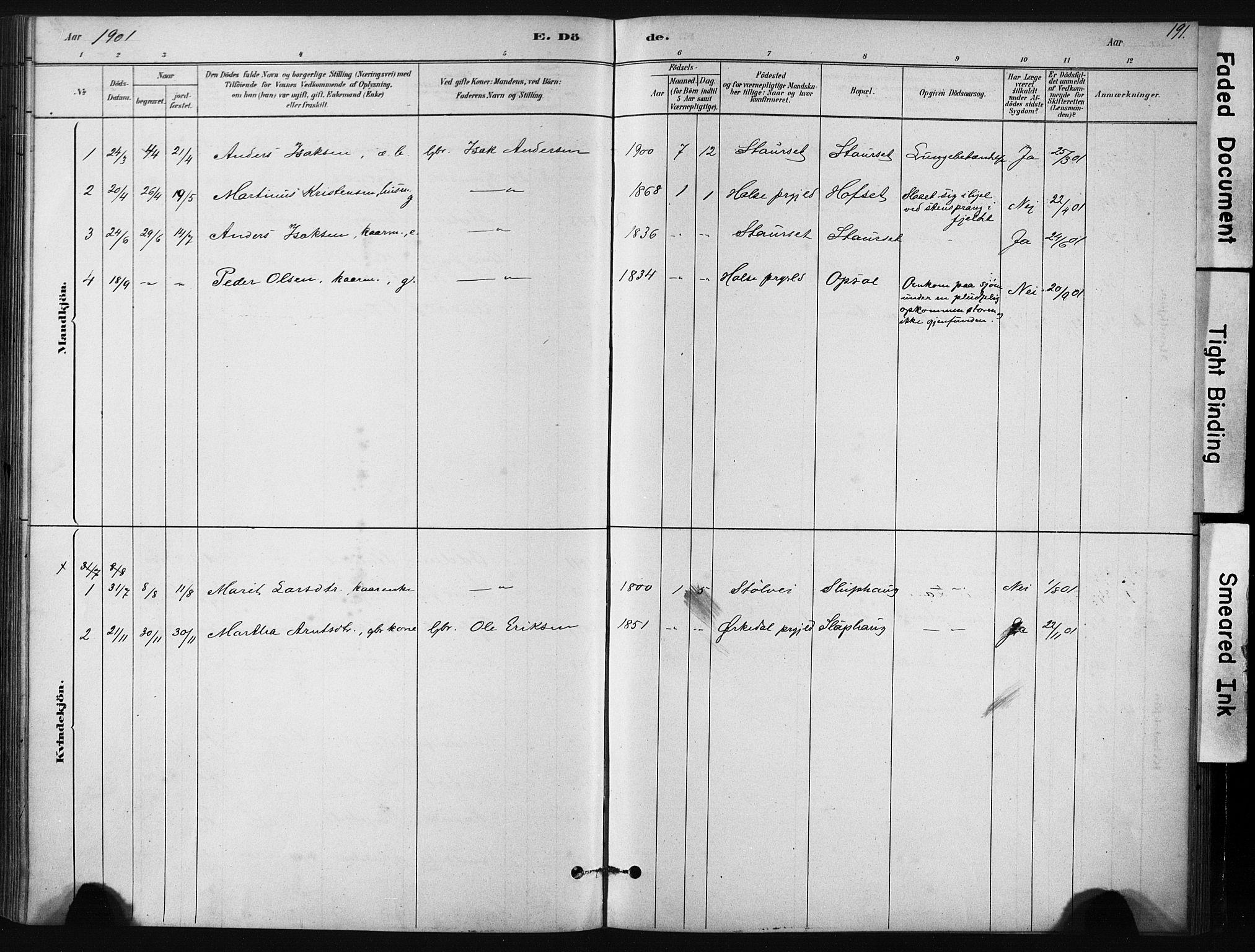 SAT, Ministerialprotokoller, klokkerbøker og fødselsregistre - Sør-Trøndelag, 631/L0512: Ministerialbok nr. 631A01, 1879-1912, s. 191