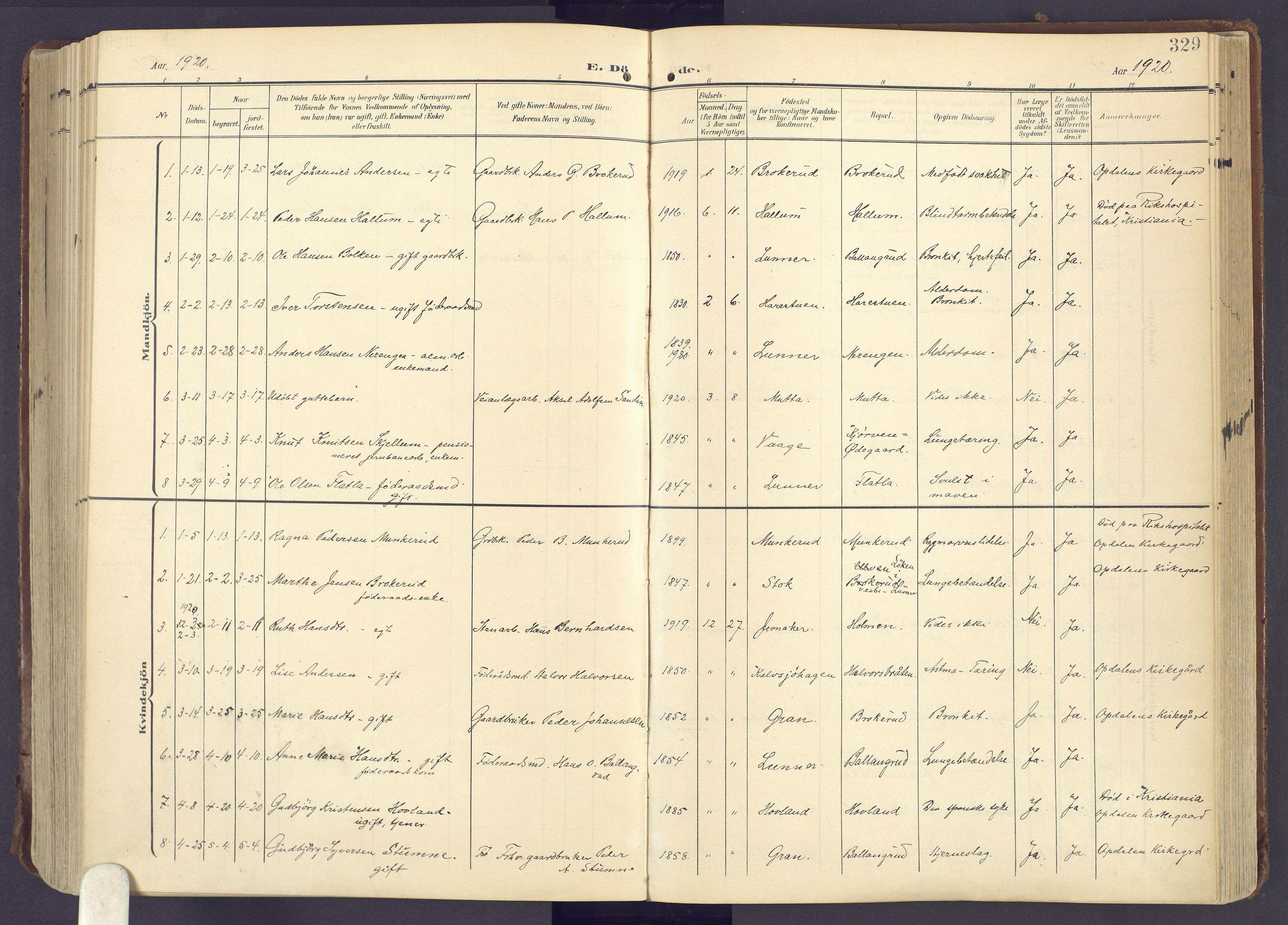 SAH, Lunner prestekontor, H/Ha/Haa/L0001: Ministerialbok nr. 1, 1907-1922, s. 329
