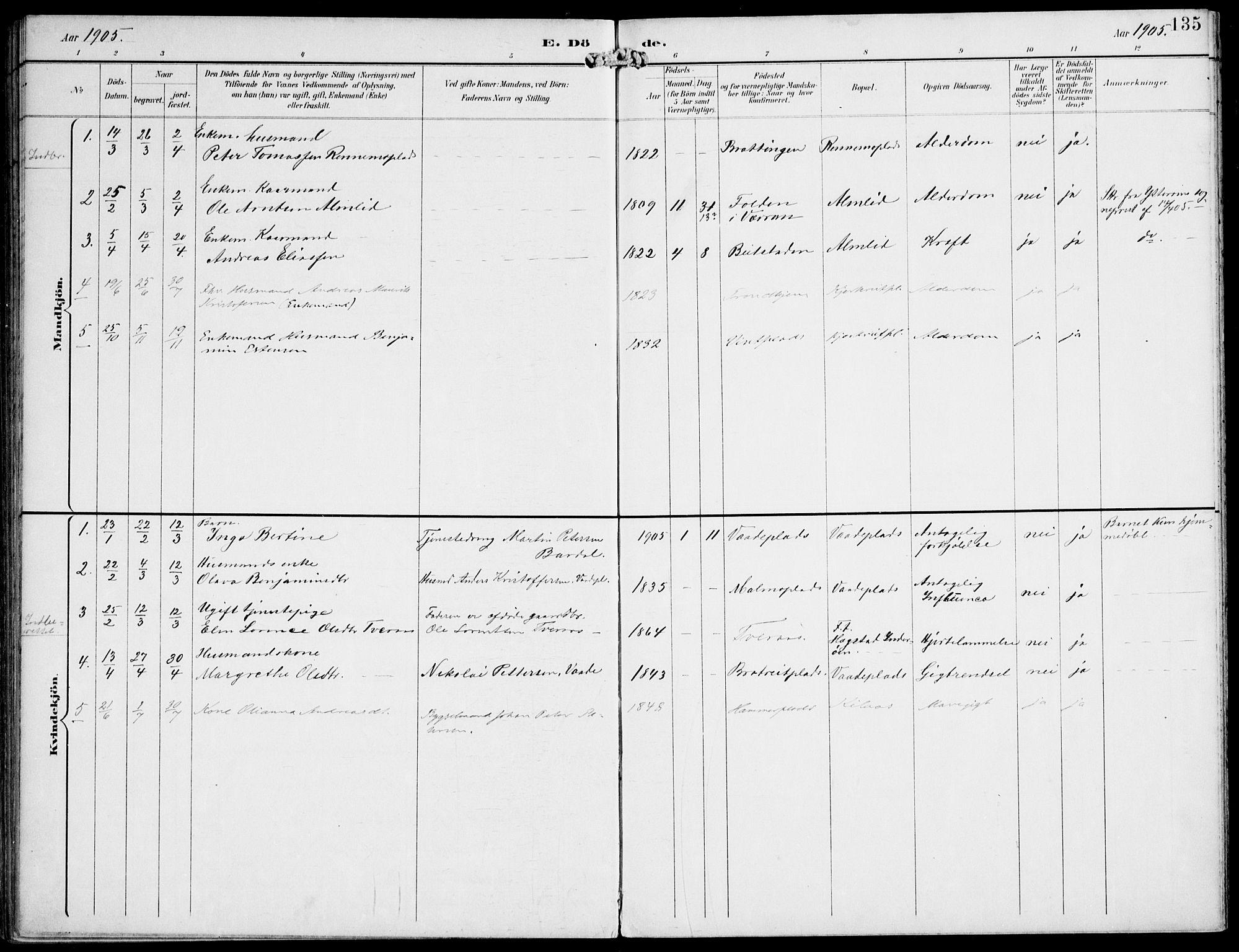 SAT, Ministerialprotokoller, klokkerbøker og fødselsregistre - Nord-Trøndelag, 745/L0430: Ministerialbok nr. 745A02, 1895-1913, s. 135