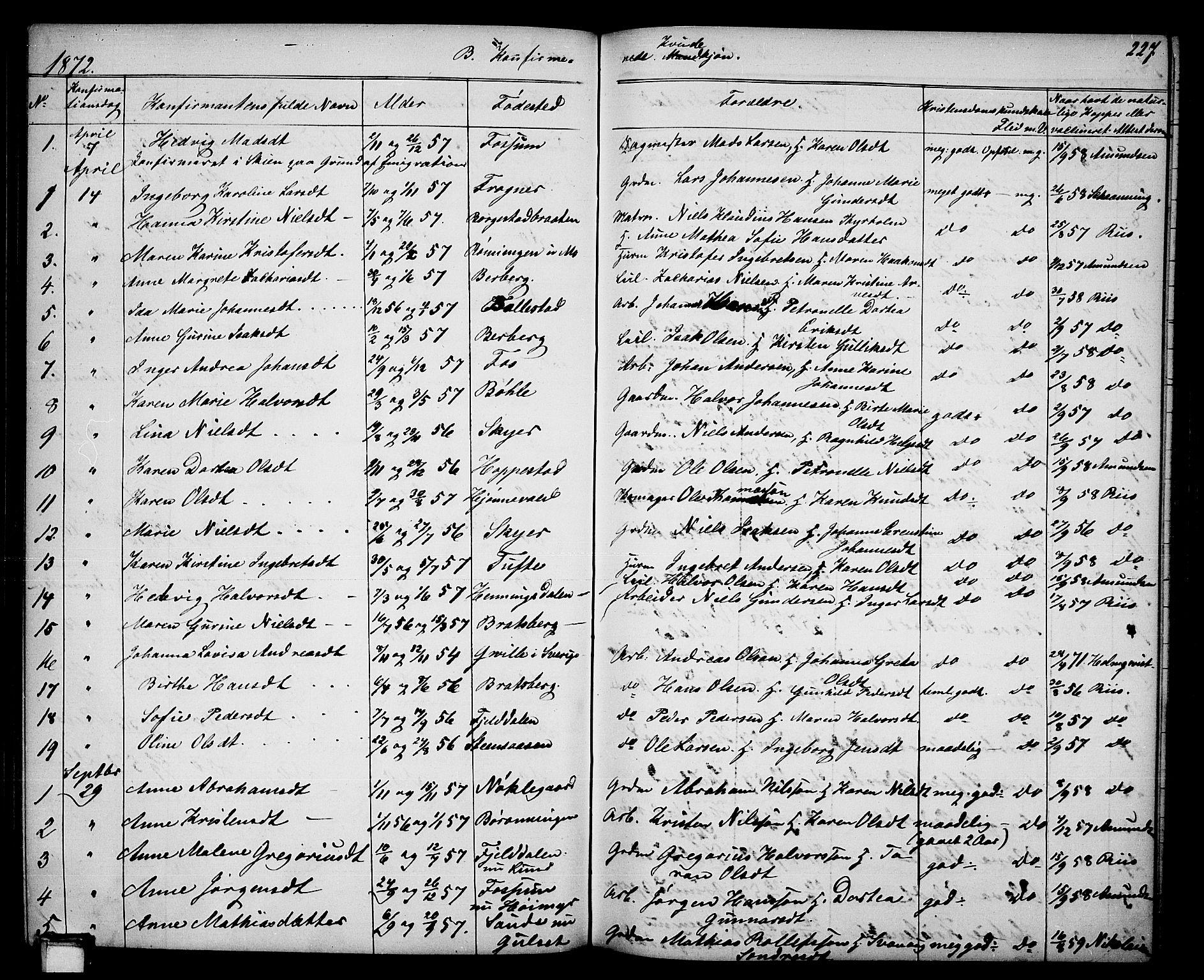 SAKO, Gjerpen kirkebøker, G/Ga/L0001: Klokkerbok nr. I 1, 1864-1882, s. 227