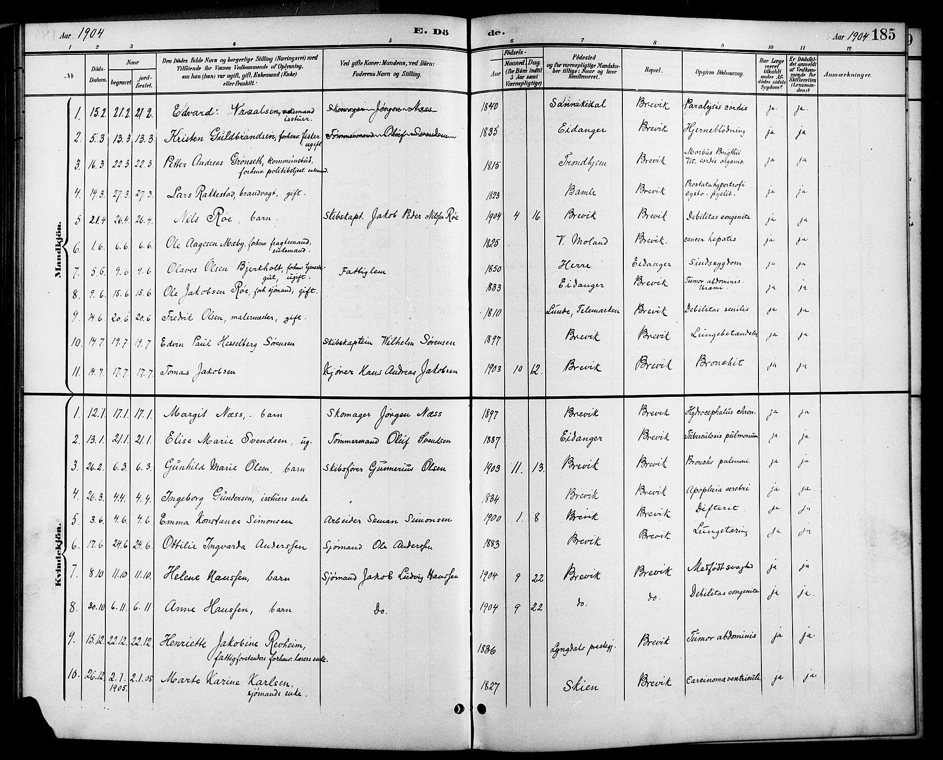 SAKO, Brevik kirkebøker, G/Ga/L0005: Klokkerbok nr. 5, 1901-1924, s. 185
