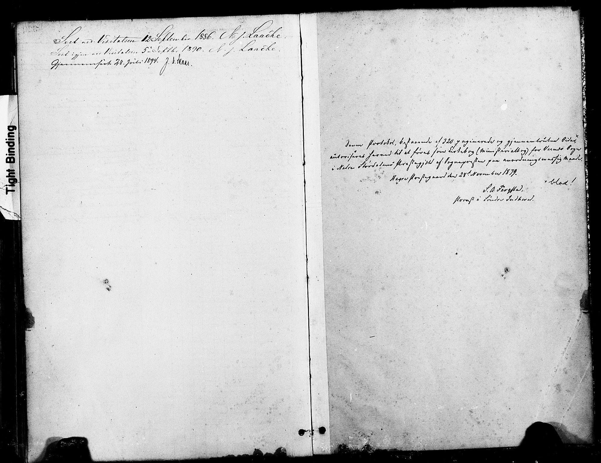 SAT, Ministerialprotokoller, klokkerbøker og fødselsregistre - Nord-Trøndelag, 709/L0077: Ministerialbok nr. 709A17, 1880-1895