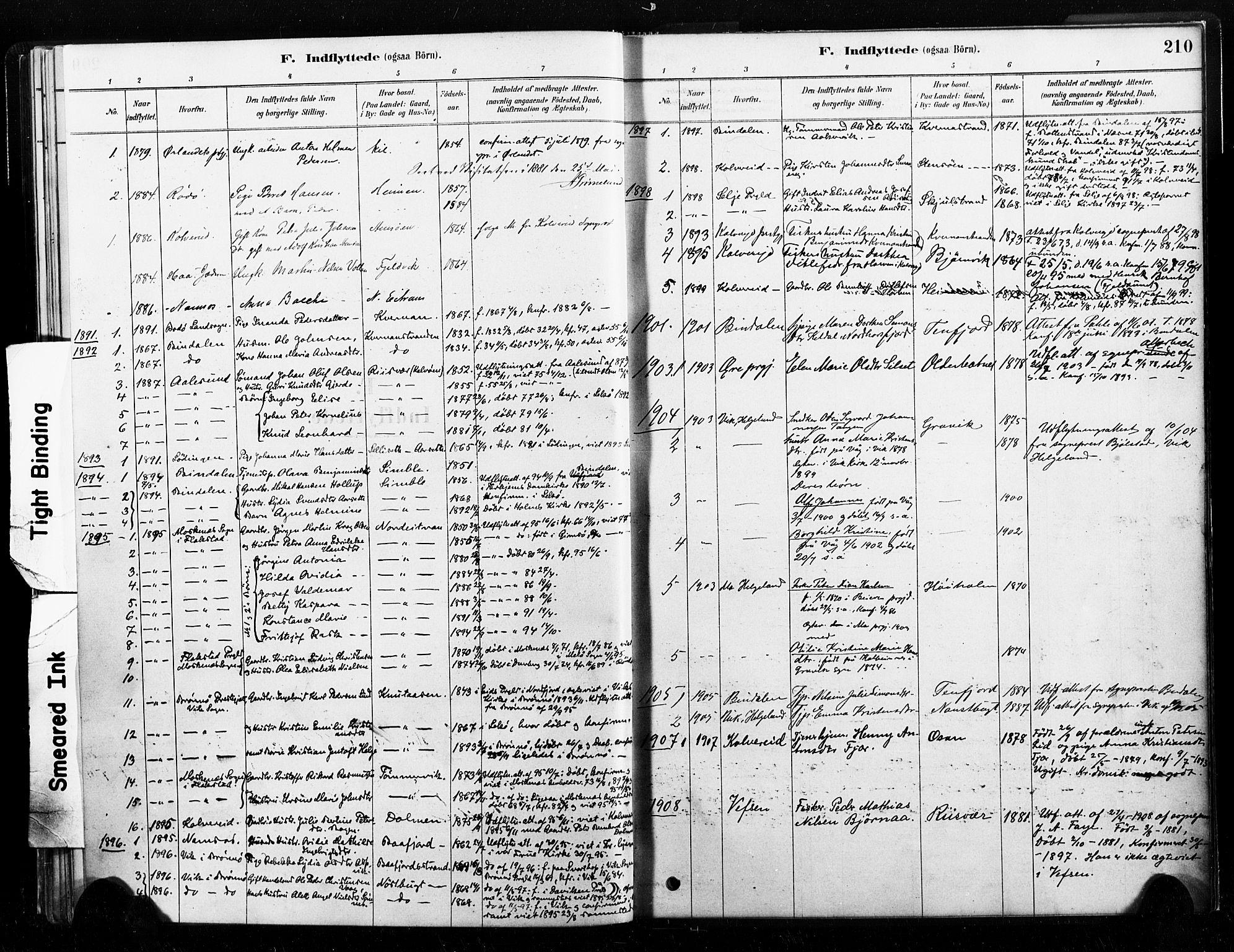 SAT, Ministerialprotokoller, klokkerbøker og fødselsregistre - Nord-Trøndelag, 789/L0705: Ministerialbok nr. 789A01, 1878-1910, s. 210