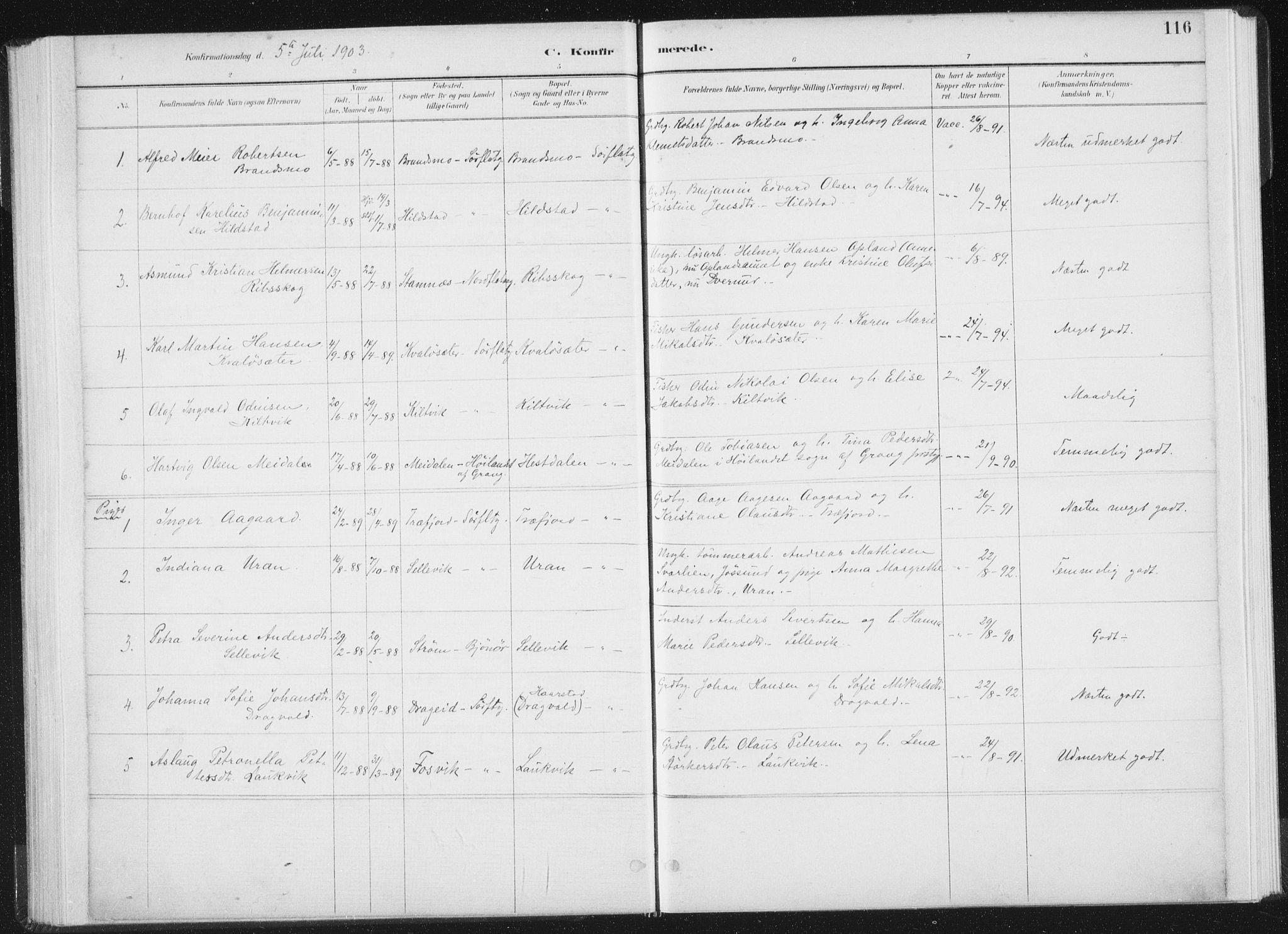 SAT, Ministerialprotokoller, klokkerbøker og fødselsregistre - Nord-Trøndelag, 771/L0597: Ministerialbok nr. 771A04, 1885-1910, s. 116