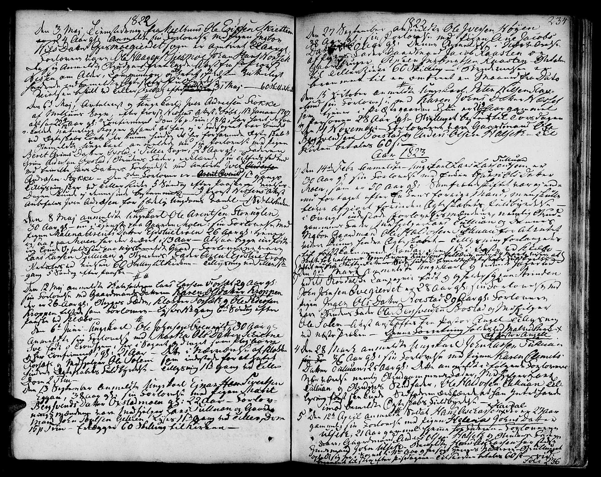 SAT, Ministerialprotokoller, klokkerbøker og fødselsregistre - Sør-Trøndelag, 618/L0438: Ministerialbok nr. 618A03, 1783-1815, s. 234
