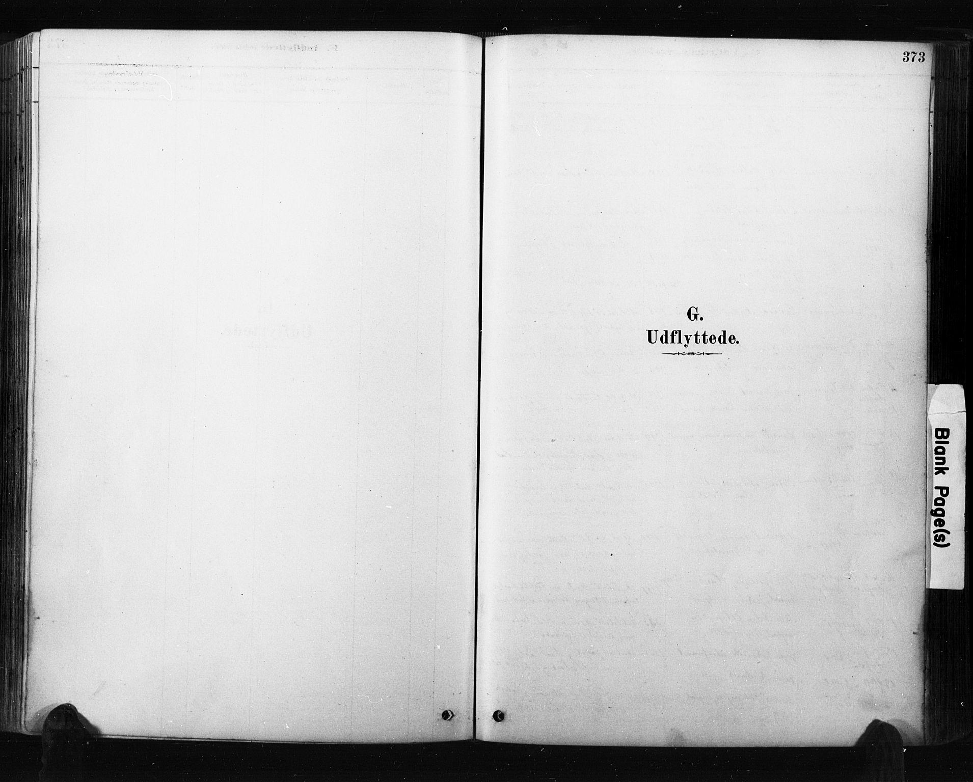 SAO, Råde prestekontor kirkebøker, F/Fa/L0007: Ministerialbok nr. 7, 1878-1902, s. 373