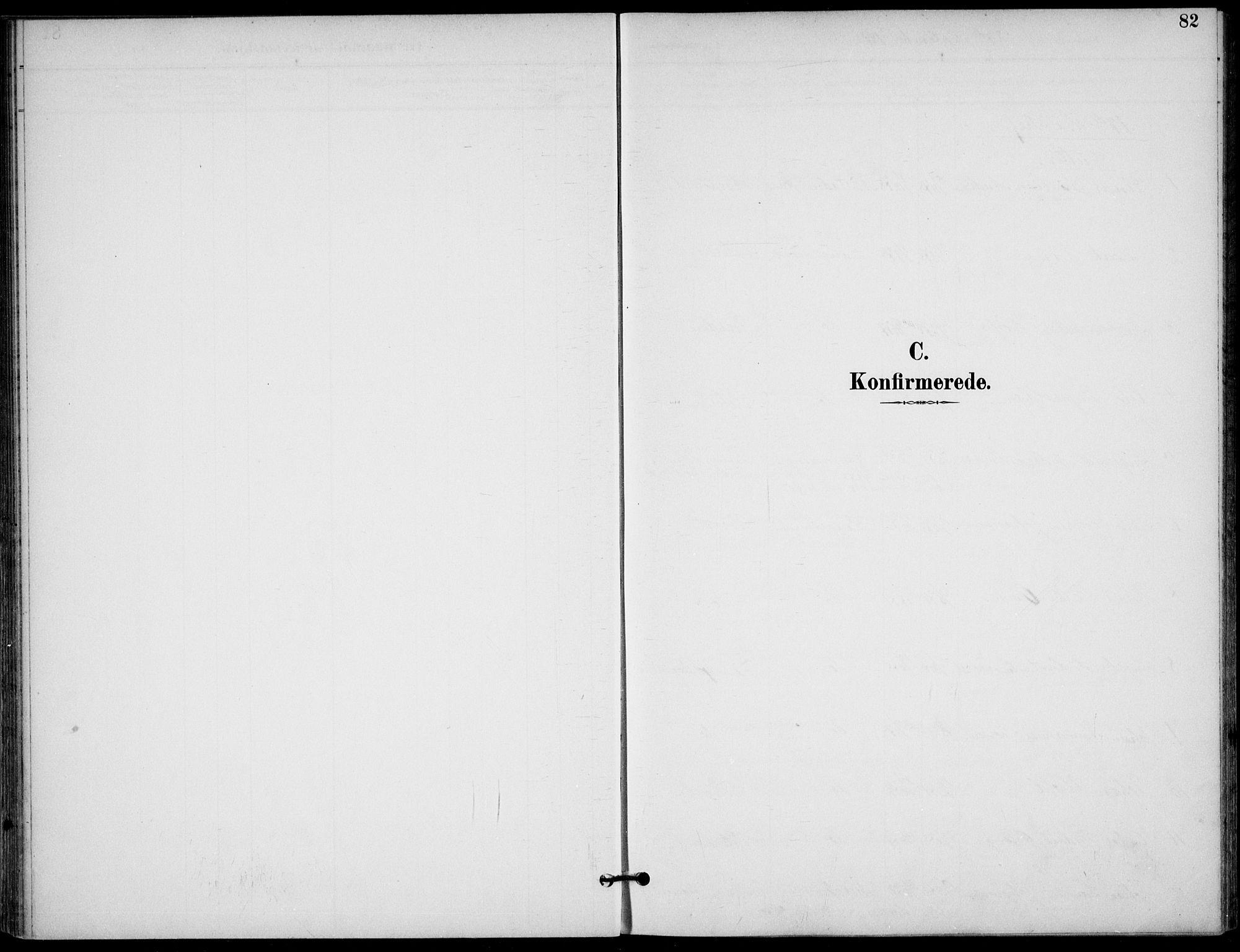 SAKO, Langesund kirkebøker, F/Fa/L0003: Ministerialbok nr. 3, 1893-1907, s. 82