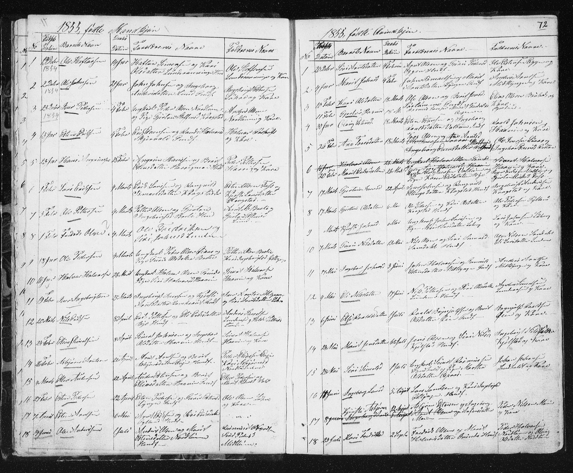 SAT, Ministerialprotokoller, klokkerbøker og fødselsregistre - Sør-Trøndelag, 692/L1110: Klokkerbok nr. 692C05, 1849-1889, s. 72