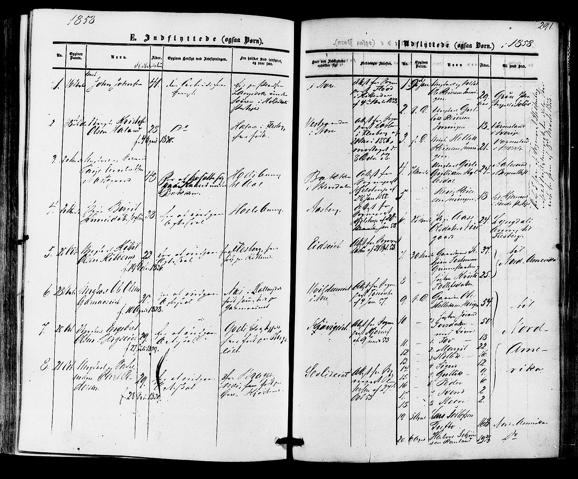 SAKO, Nore kirkebøker, F/Fa/L0003: Ministerialbok nr. I 3, 1858-1866, s. 291