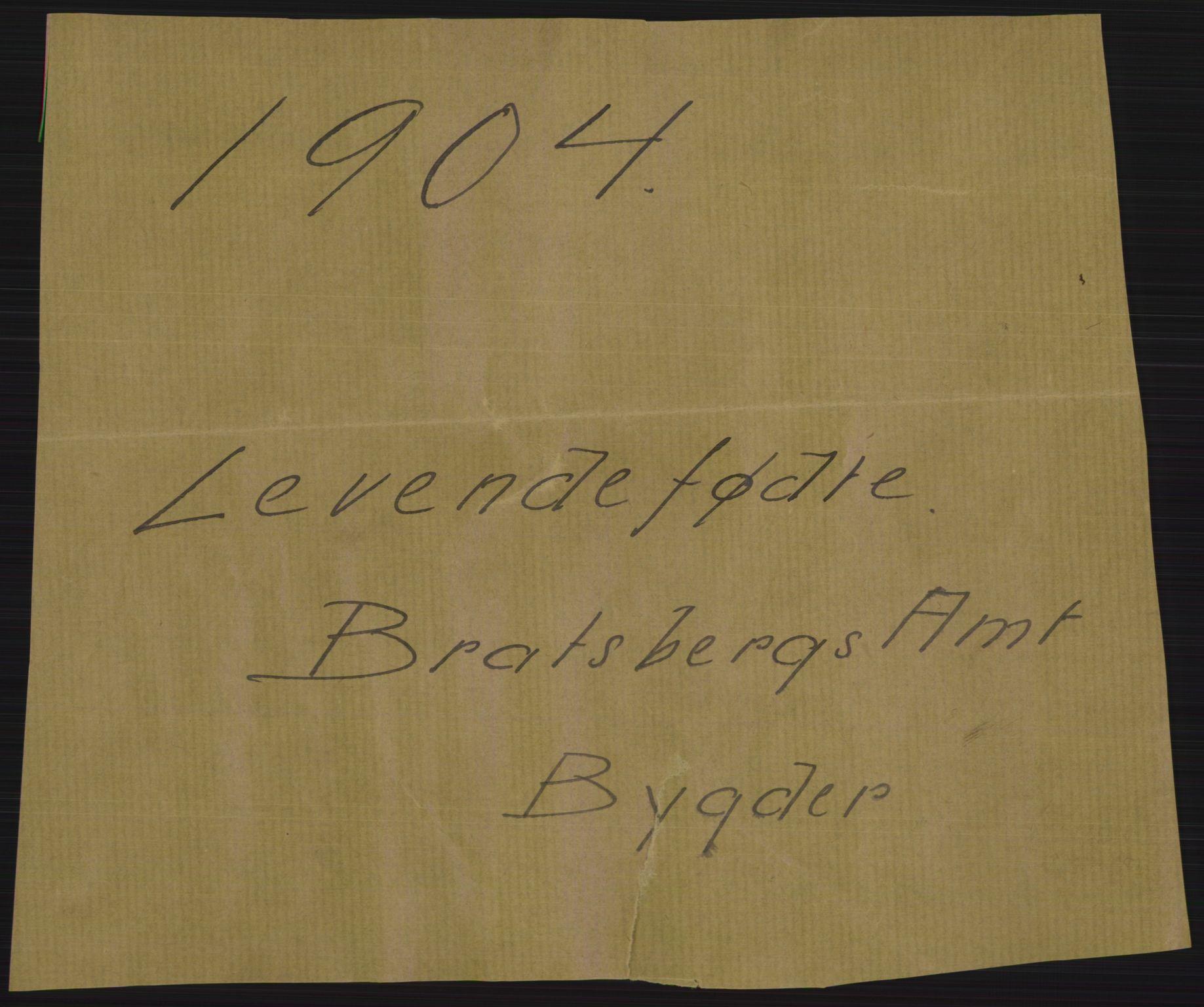 RA, Statistisk sentralbyrå, Sosiodemografiske emner, Befolkning, D/Df/Dfa/Dfab/L0009: Bratsberg amt: Fødte, gifte, døde, 1904