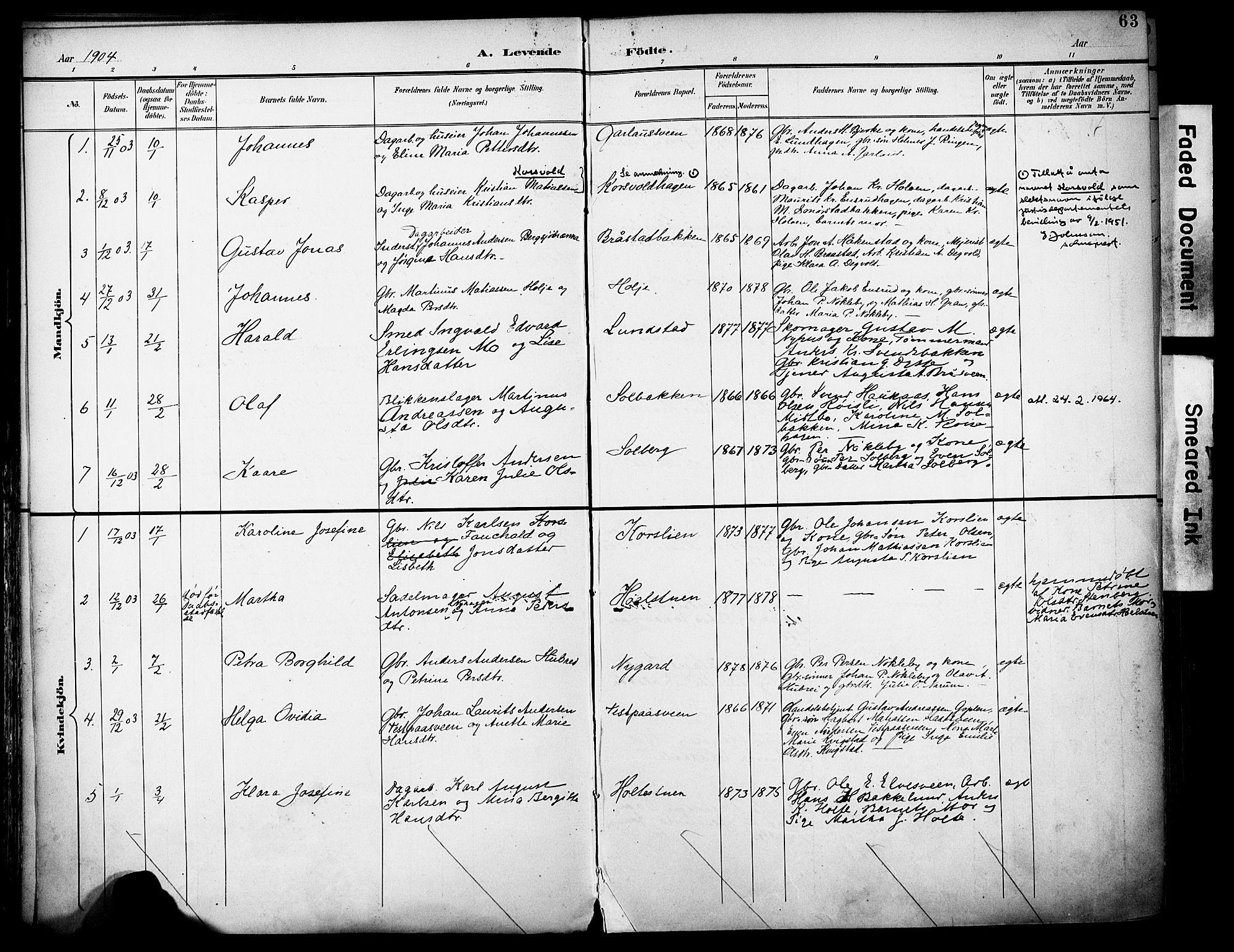 SAH, Vestre Toten prestekontor, H/Ha/Haa/L0013: Ministerialbok nr. 13, 1895-1911, s. 63