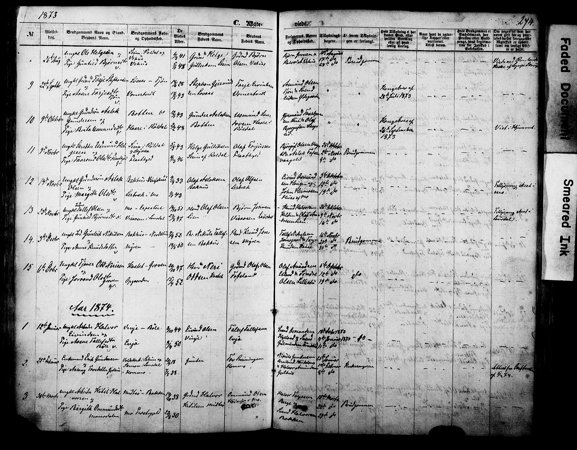 SAKO, Vinje kirkebøker, F/Fa/L0005: Ministerialbok nr. I 5, 1870-1886, s. 274
