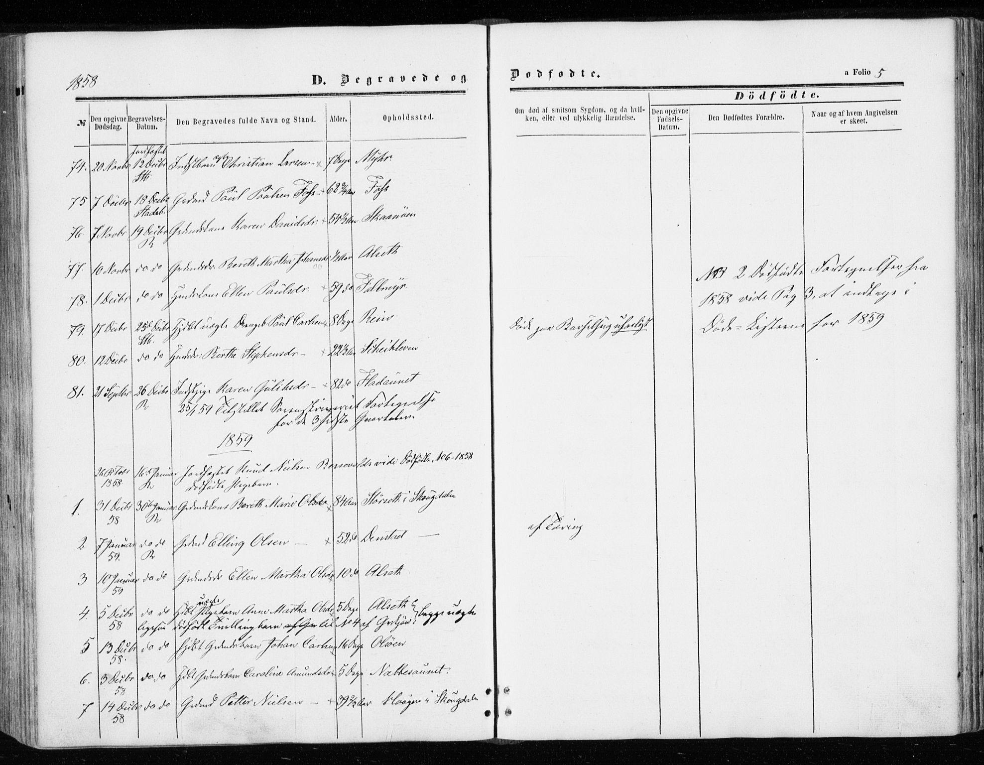 SAT, Ministerialprotokoller, klokkerbøker og fødselsregistre - Sør-Trøndelag, 646/L0612: Ministerialbok nr. 646A10, 1858-1869, s. 5