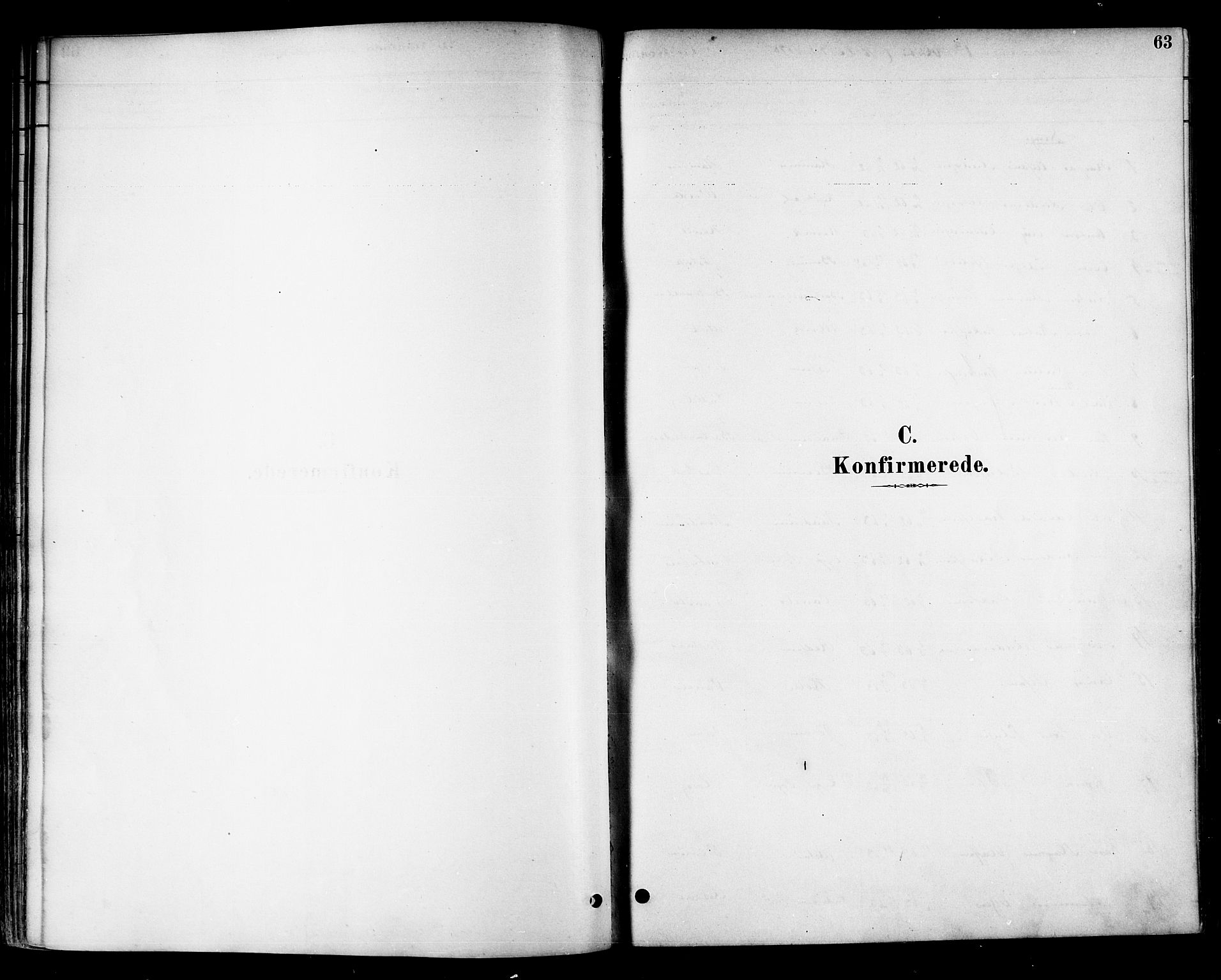 SAT, Ministerialprotokoller, klokkerbøker og fødselsregistre - Nord-Trøndelag, 741/L0395: Ministerialbok nr. 741A09, 1878-1888, s. 63