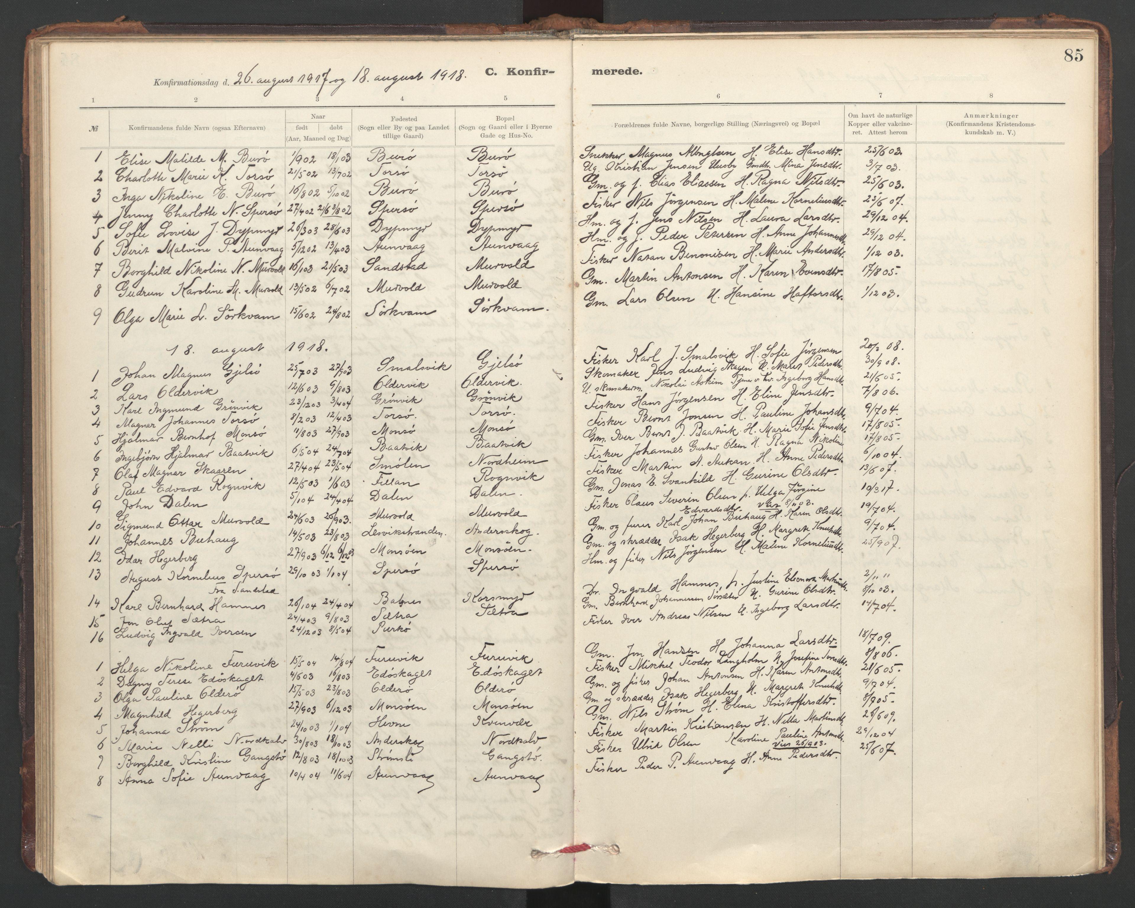 SAT, Ministerialprotokoller, klokkerbøker og fødselsregistre - Sør-Trøndelag, 635/L0552: Ministerialbok nr. 635A02, 1899-1919, s. 85