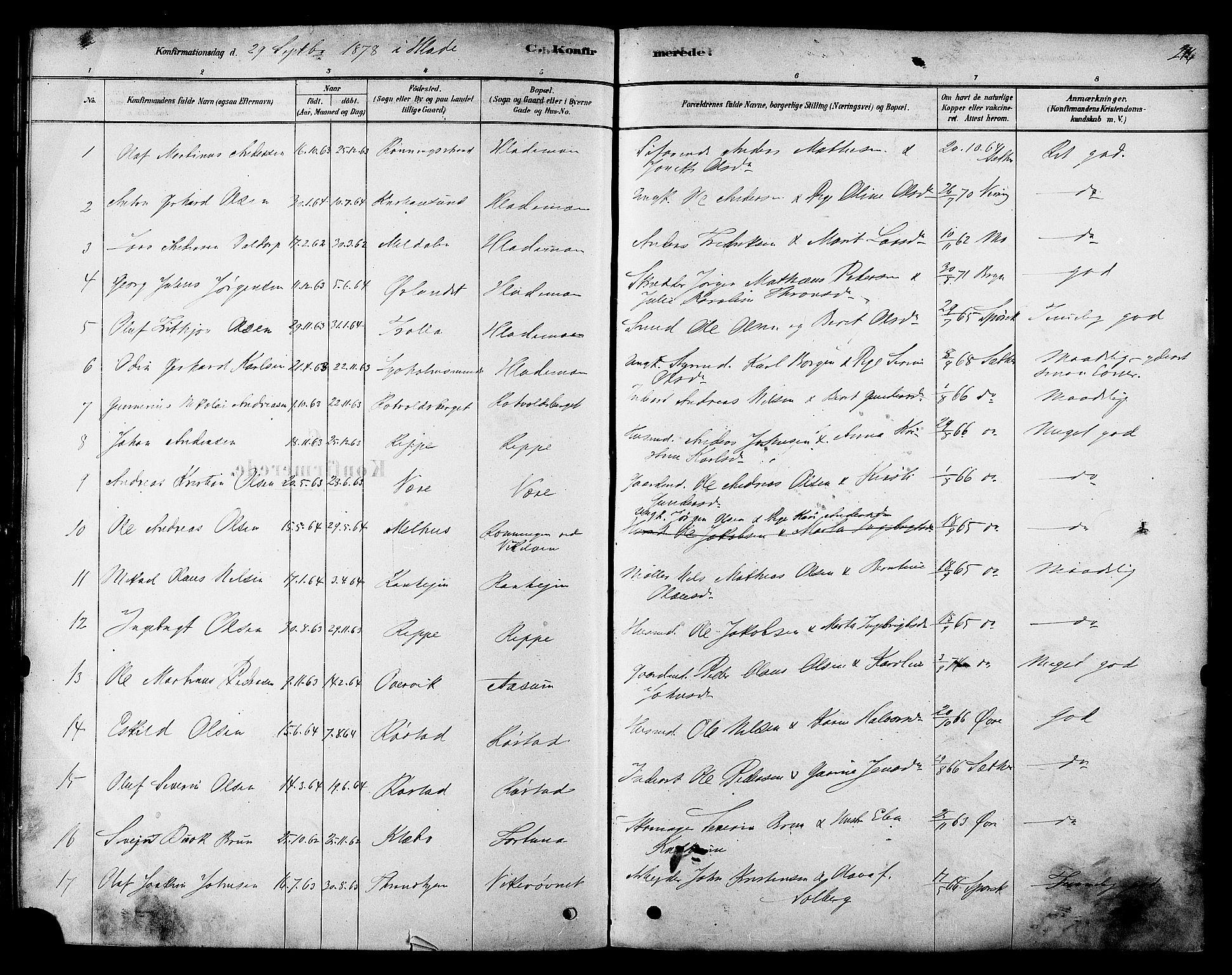 SAT, Ministerialprotokoller, klokkerbøker og fødselsregistre - Sør-Trøndelag, 606/L0294: Ministerialbok nr. 606A09, 1878-1886, s. 216