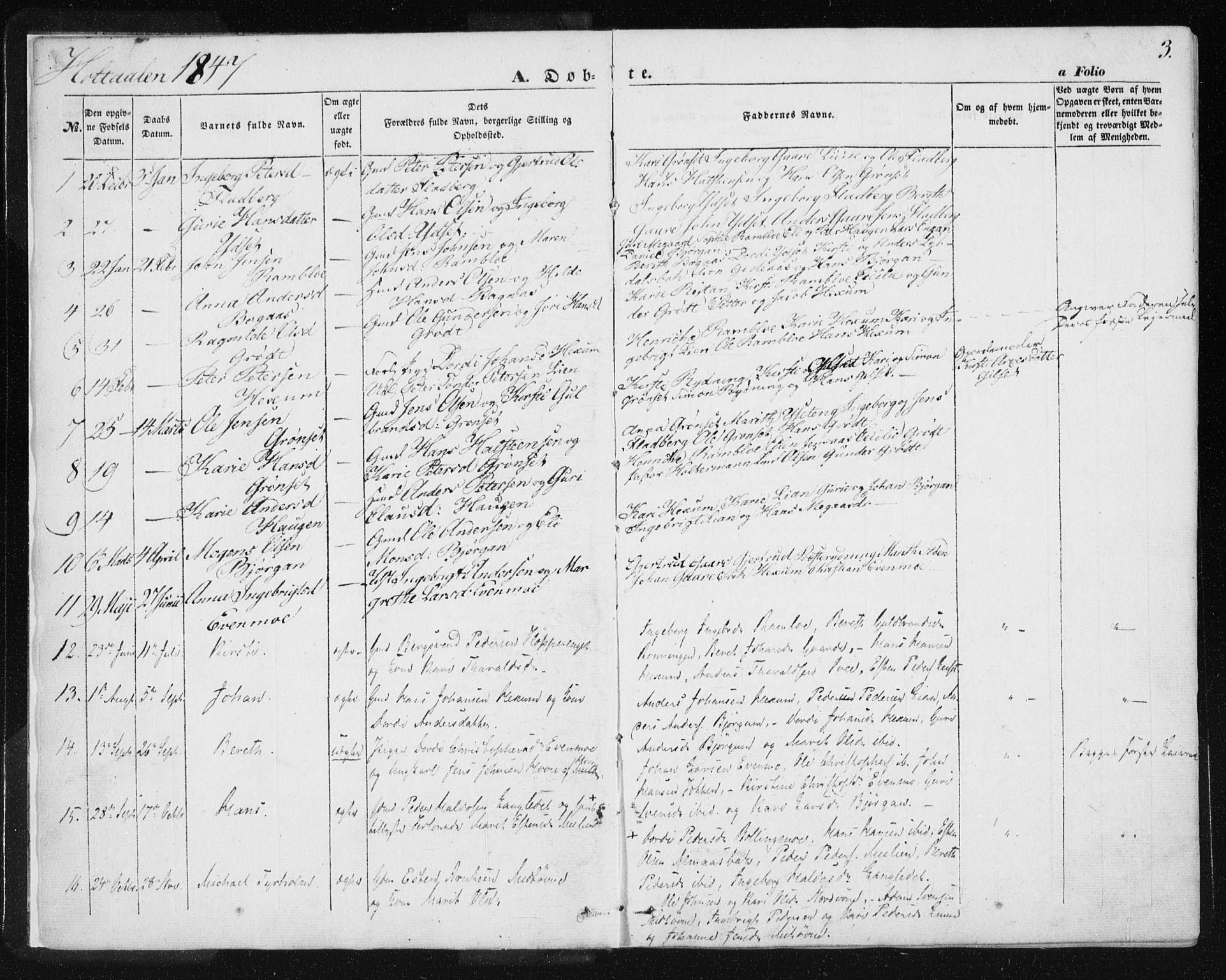 SAT, Ministerialprotokoller, klokkerbøker og fødselsregistre - Sør-Trøndelag, 685/L0963: Ministerialbok nr. 685A06 /1, 1846-1859, s. 3