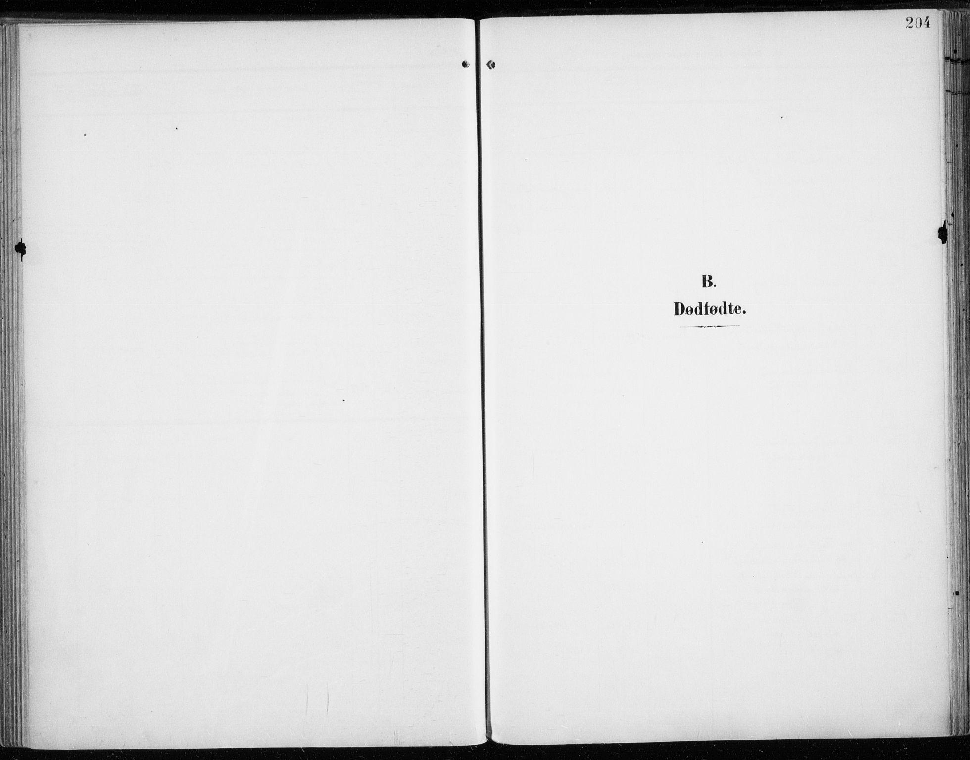 SATØ, Tromsø sokneprestkontor/stiftsprosti/domprosti, G/Ga/L0017kirke: Ministerialbok nr. 17, 1907-1917, s. 204