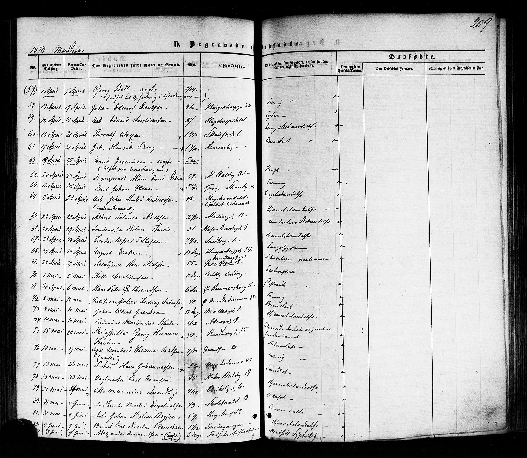 SAO, Trefoldighet prestekontor Kirkebøker, F/Fd/L0001: Ministerialbok nr. IV 1, 1858-1877, s. 209