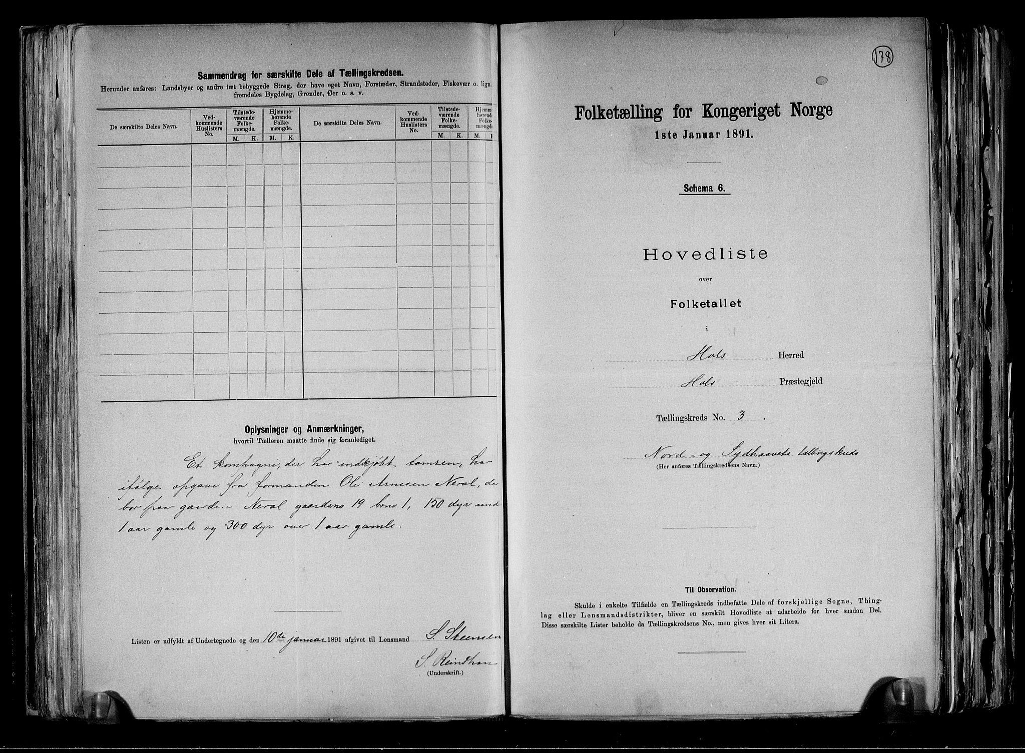 RA, Folketelling 1891 for 0620 Hol herred, 1891, s. 11